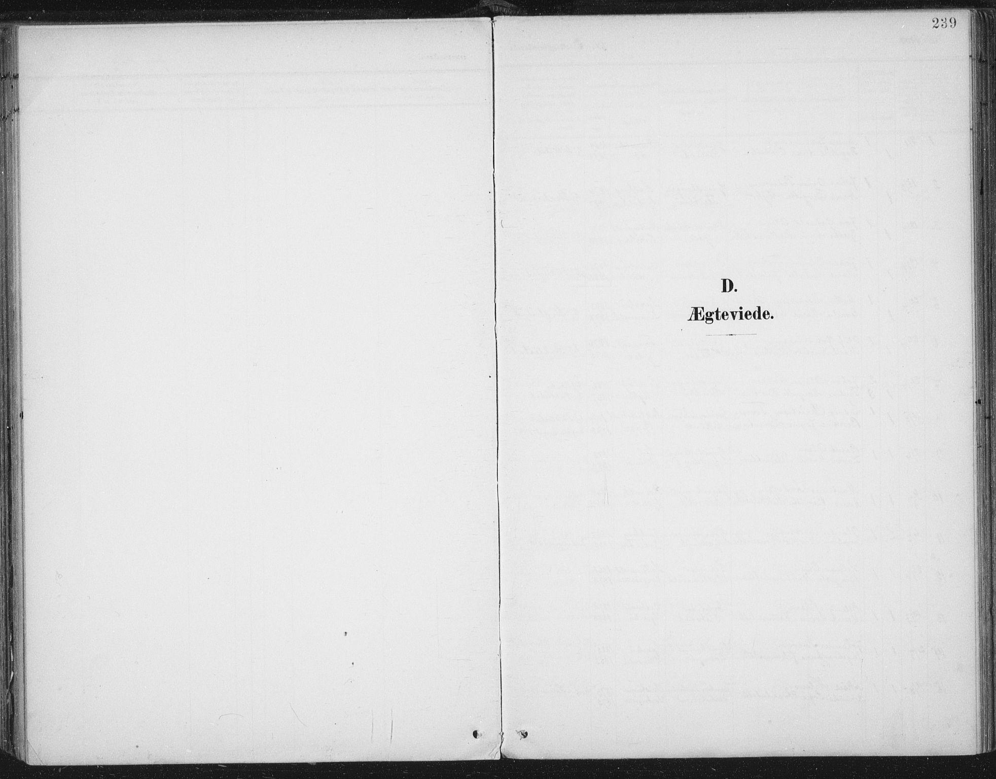 SAT, Ministerialprotokoller, klokkerbøker og fødselsregistre - Nord-Trøndelag, 723/L0246: Ministerialbok nr. 723A15, 1900-1917, s. 206