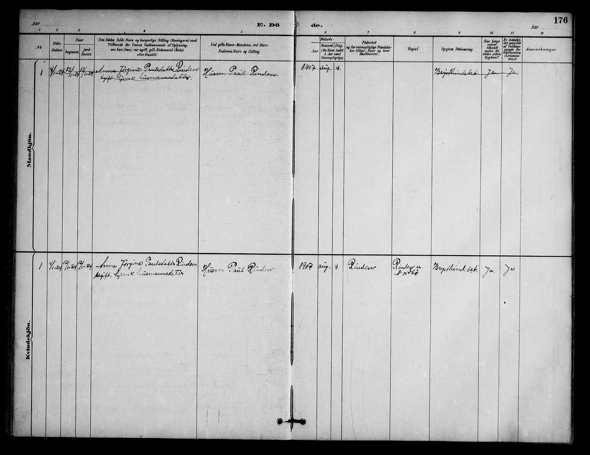 SAKO, Nissedal kirkebøker, G/Ga/L0003: Klokkerbok nr. I 3, 1887-1911, s. 176