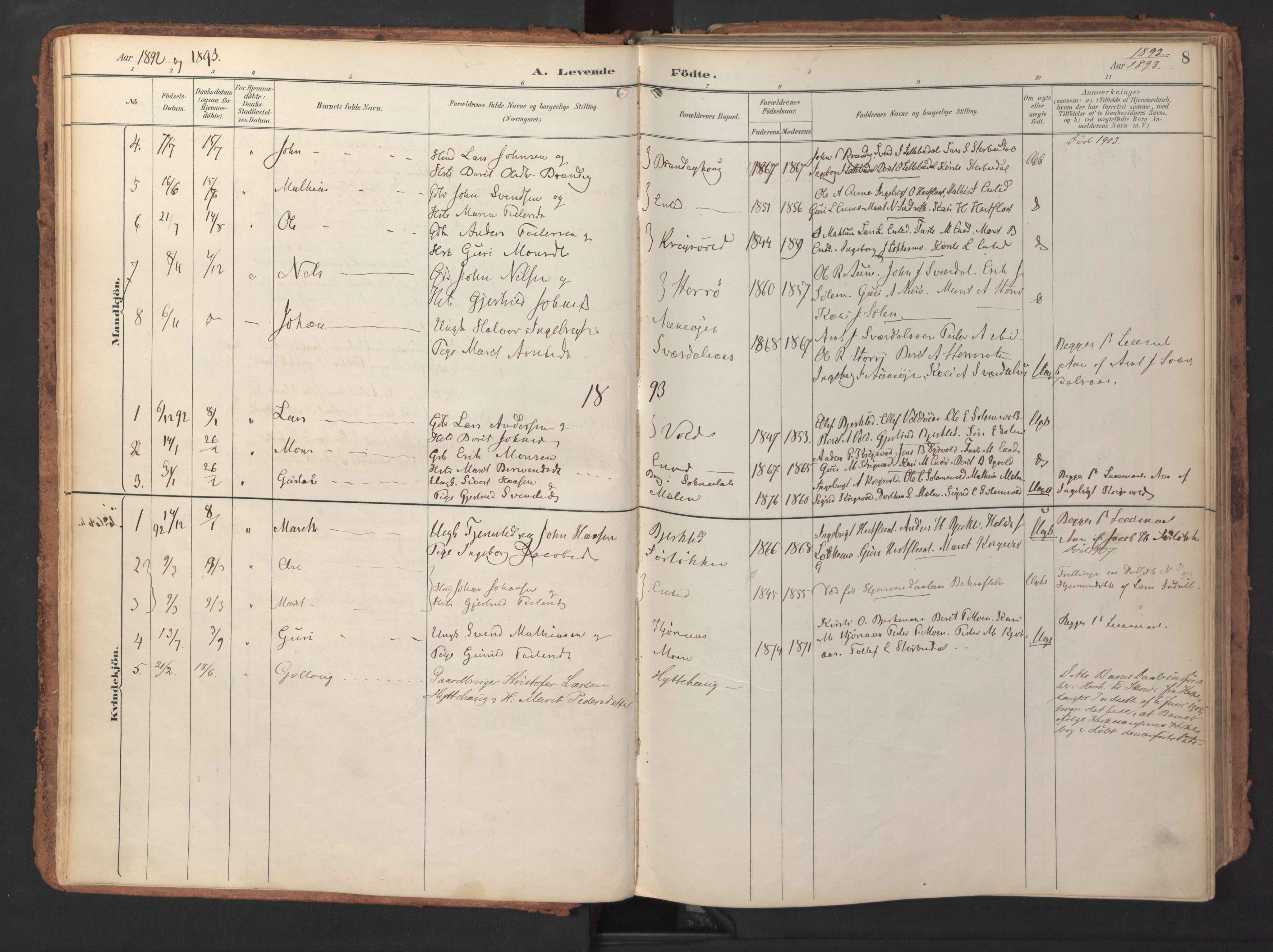 SAT, Ministerialprotokoller, klokkerbøker og fødselsregistre - Sør-Trøndelag, 690/L1050: Ministerialbok nr. 690A01, 1889-1929, s. 8