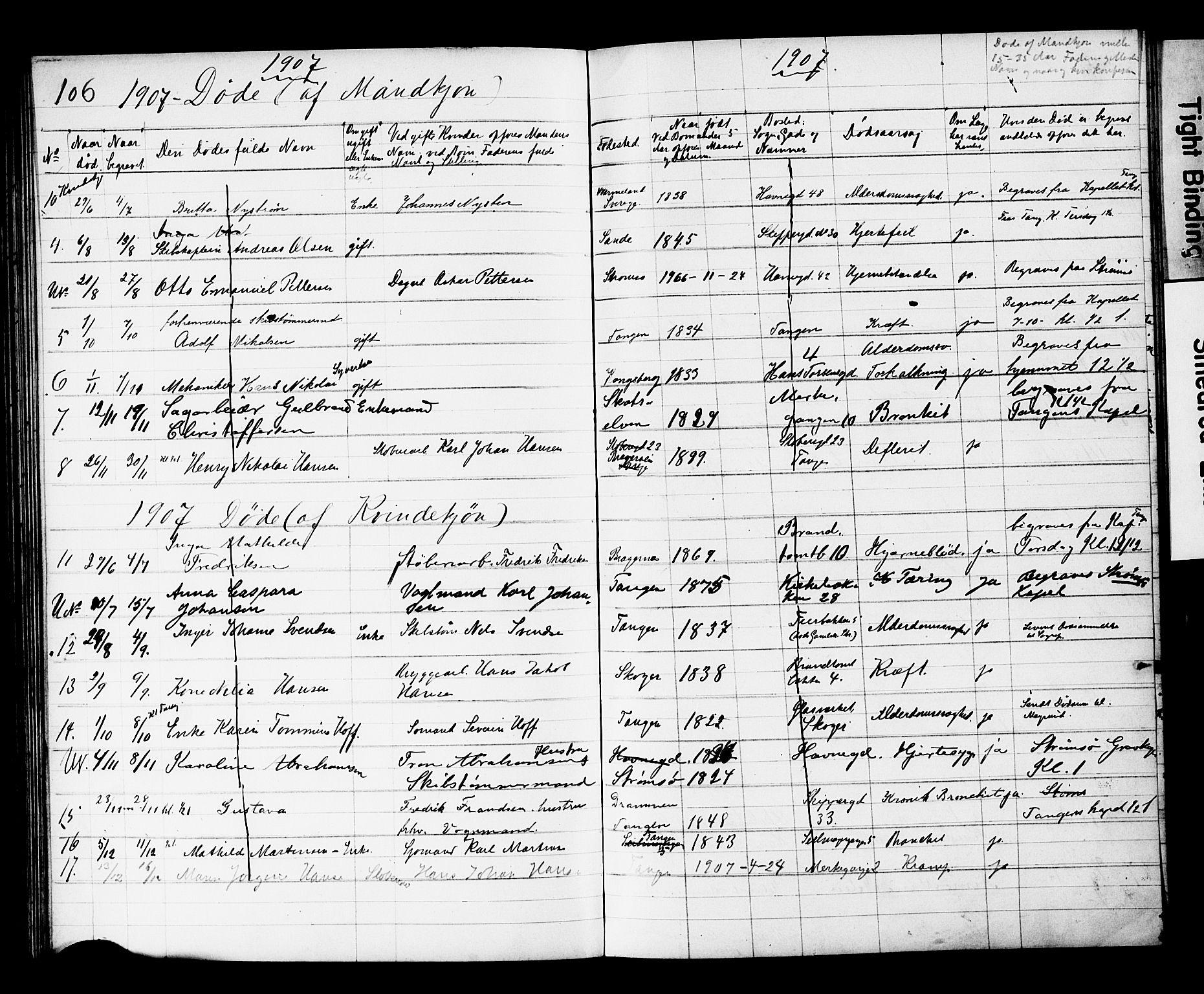 SAKO, Strømsø kirkebøker, Y/Yb/L0002: Kladd til kirkebok nr. II 2, 1907-1915, s. 106