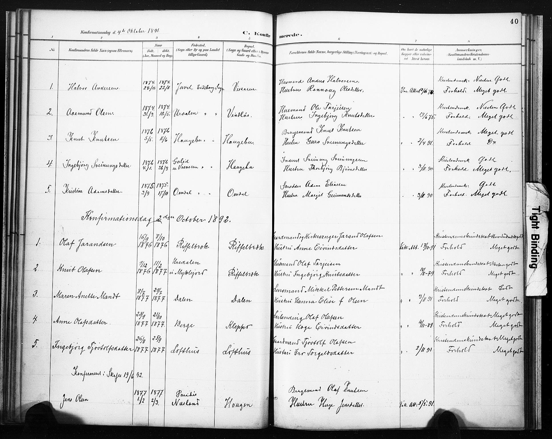 SAKO, Lårdal kirkebøker, F/Fb/L0002: Ministerialbok nr. II 2, 1887-1918, s. 40