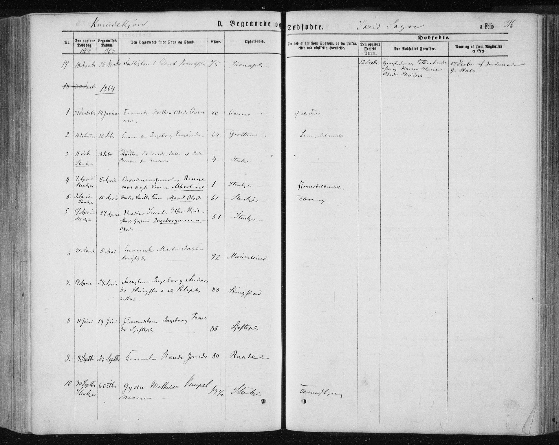 SAT, Ministerialprotokoller, klokkerbøker og fødselsregistre - Nord-Trøndelag, 735/L0345: Ministerialbok nr. 735A08 /2, 1863-1872, s. 316