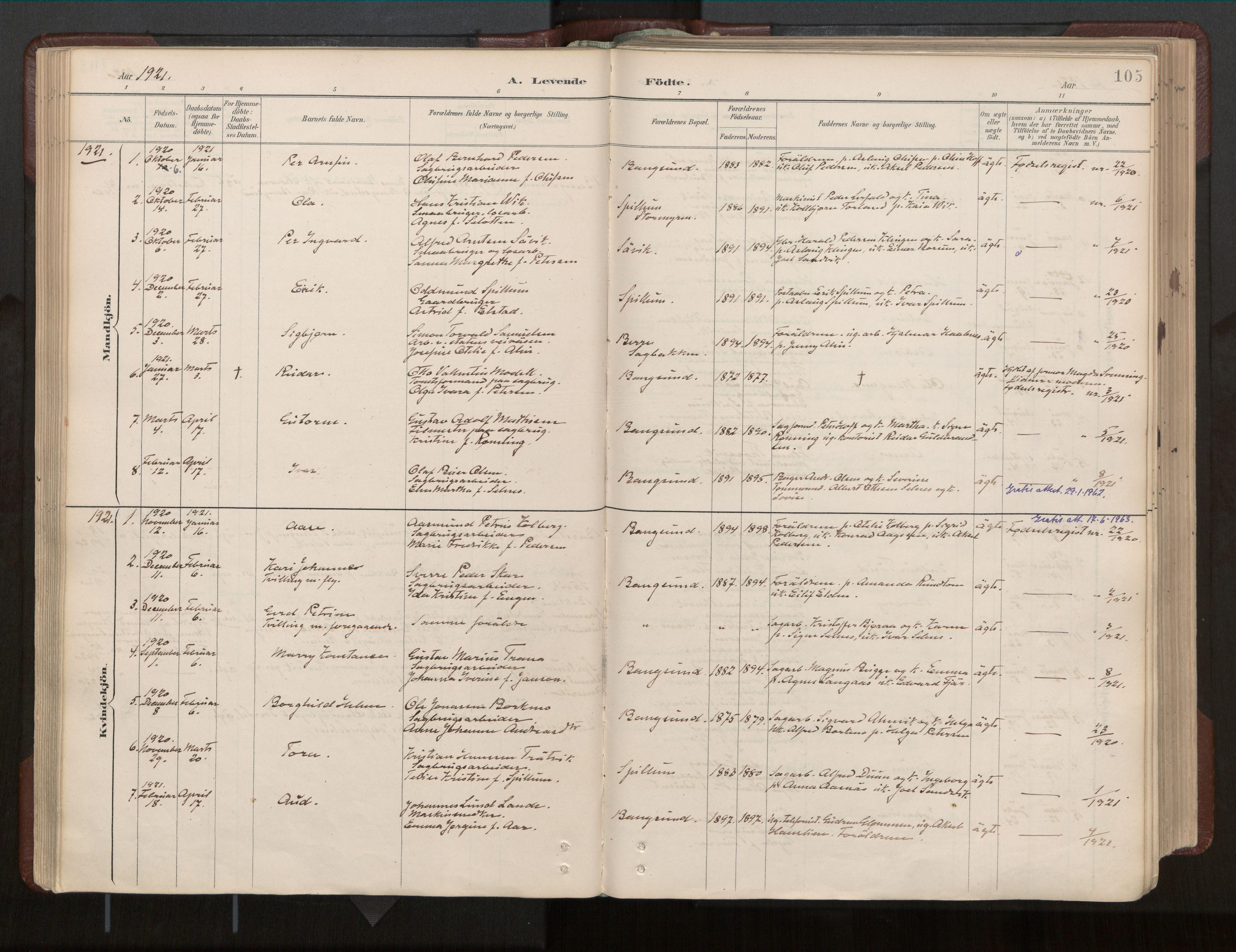 SAT, Ministerialprotokoller, klokkerbøker og fødselsregistre - Nord-Trøndelag, 770/L0589: Ministerialbok nr. 770A03, 1887-1929, s. 105