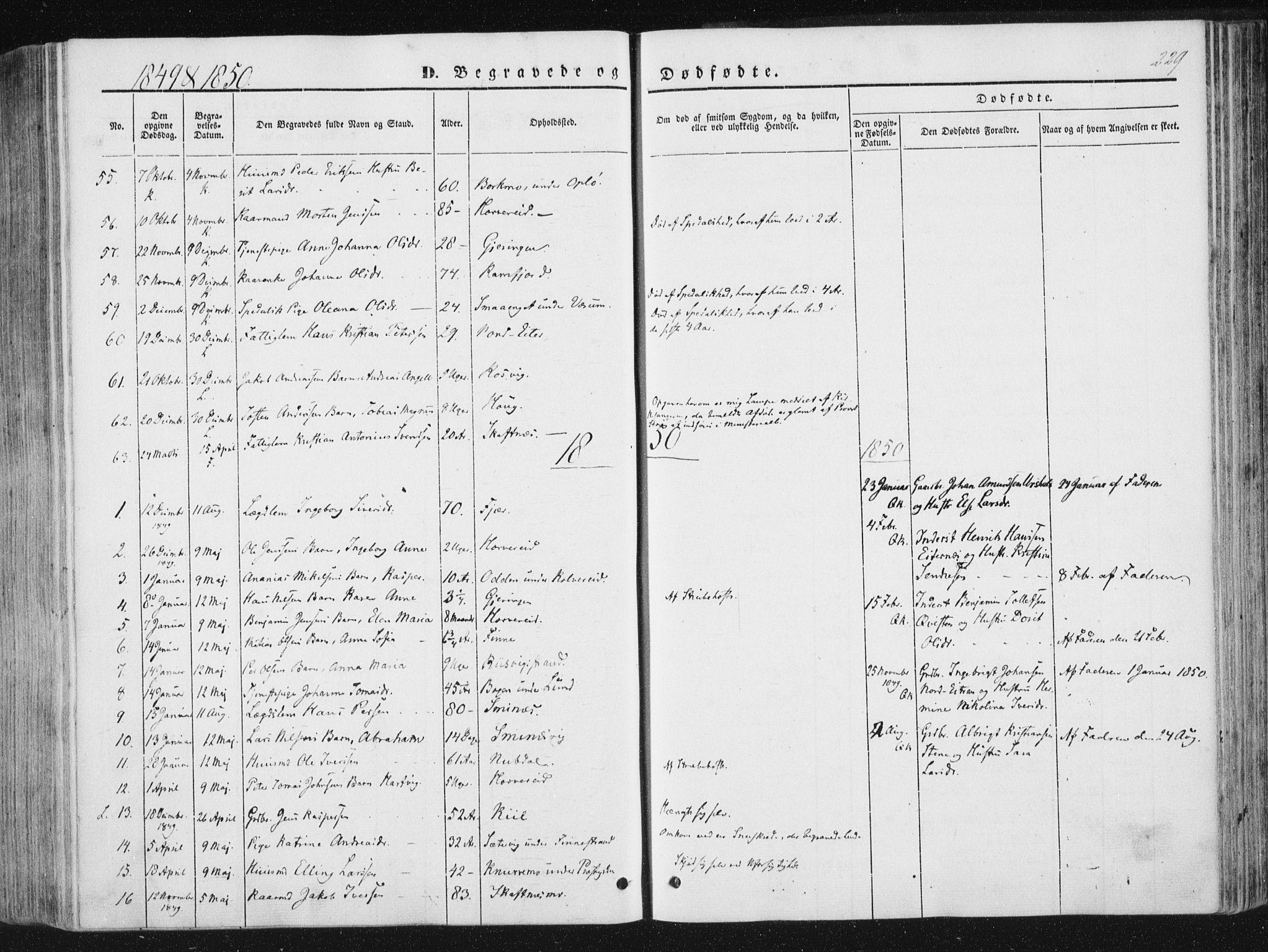 SAT, Ministerialprotokoller, klokkerbøker og fødselsregistre - Nord-Trøndelag, 780/L0640: Ministerialbok nr. 780A05, 1845-1856, s. 229
