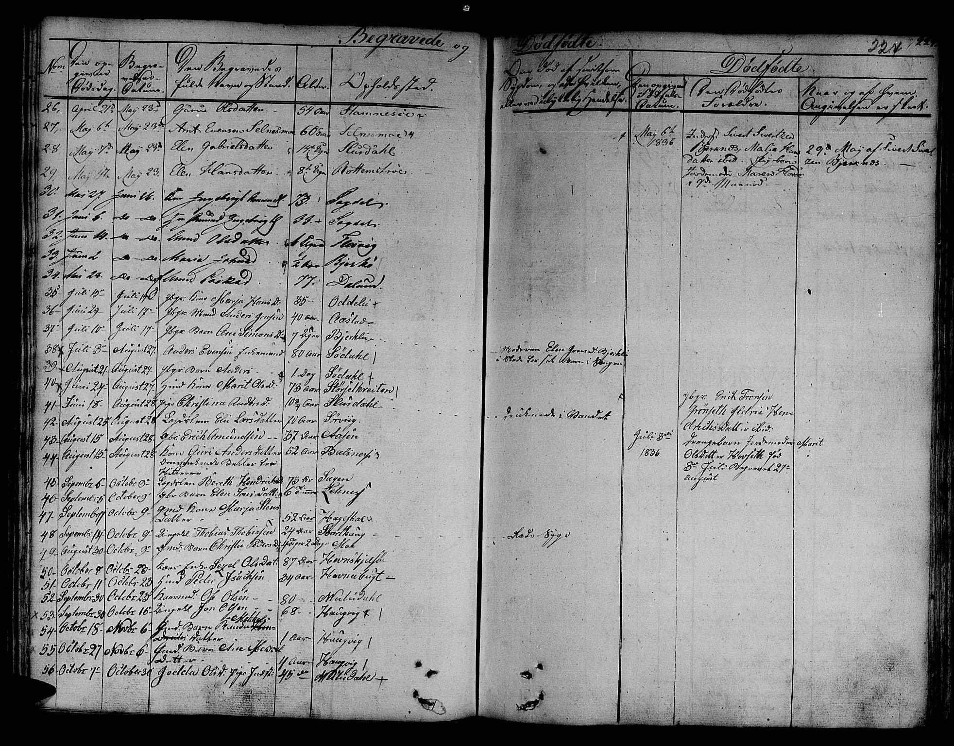 SAT, Ministerialprotokoller, klokkerbøker og fødselsregistre - Sør-Trøndelag, 630/L0492: Ministerialbok nr. 630A05, 1830-1840, s. 224