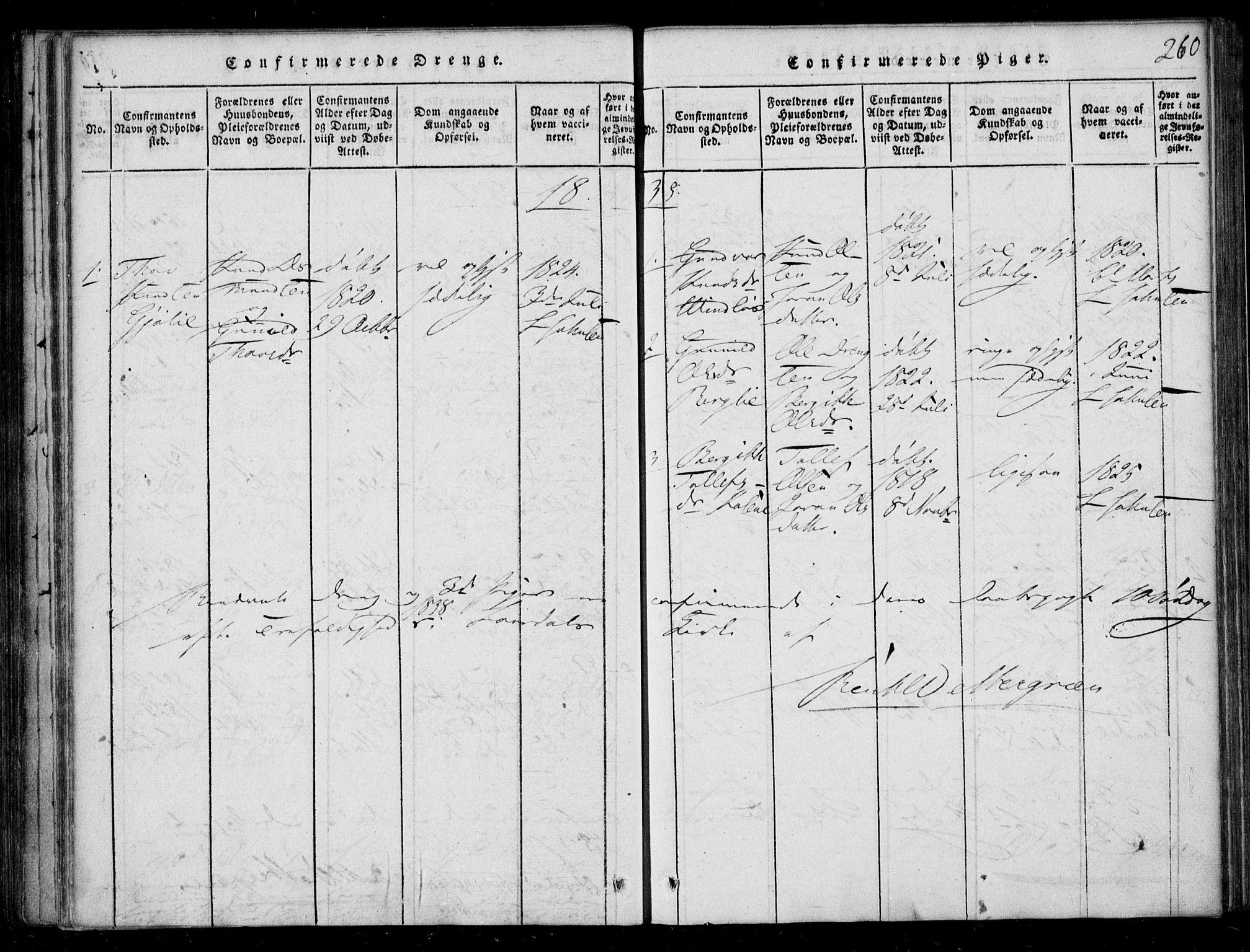 SAKO, Lårdal kirkebøker, F/Fb/L0001: Ministerialbok nr. II 1, 1815-1860, s. 260