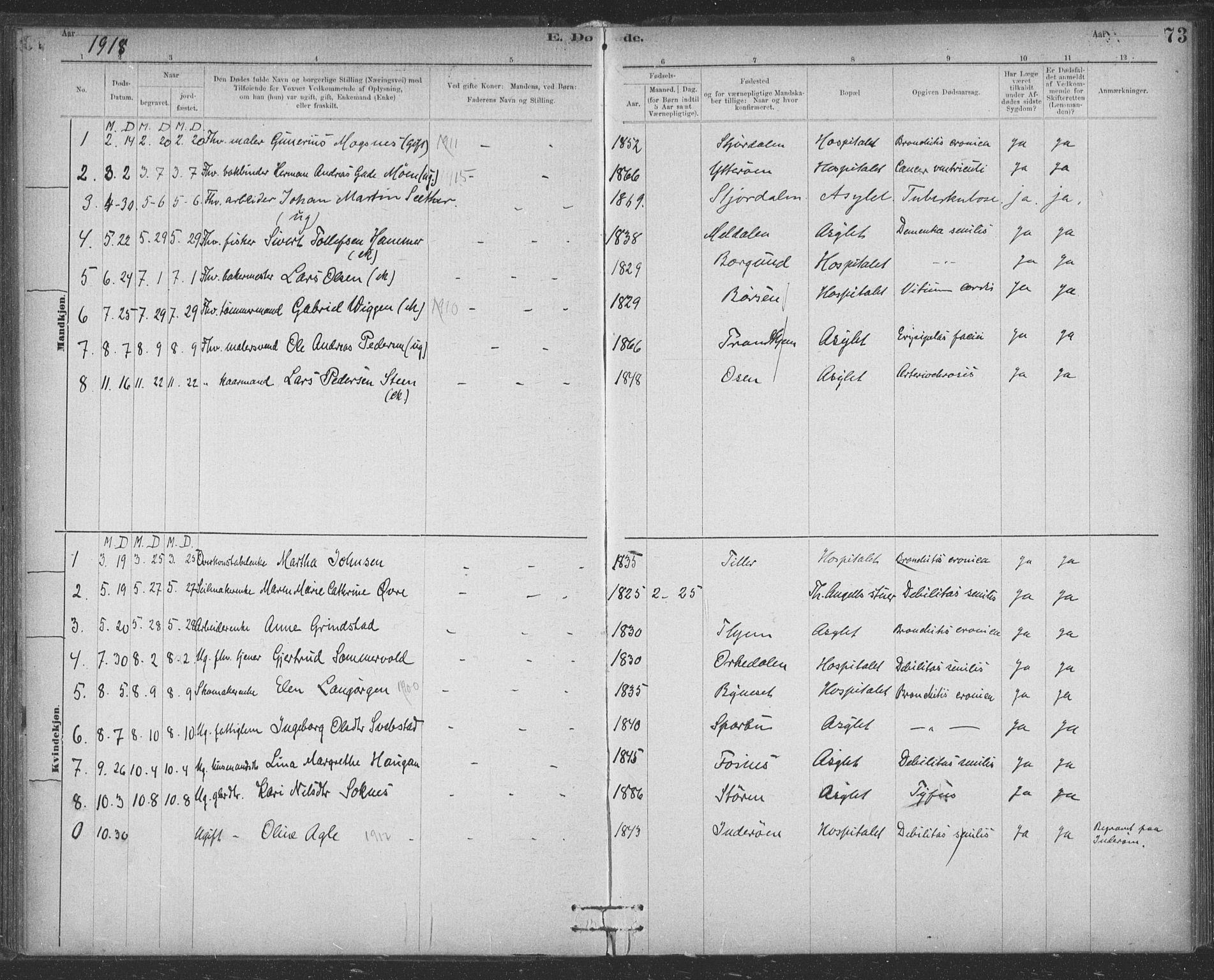 SAT, Ministerialprotokoller, klokkerbøker og fødselsregistre - Sør-Trøndelag, 623/L0470: Ministerialbok nr. 623A04, 1884-1938, s. 73