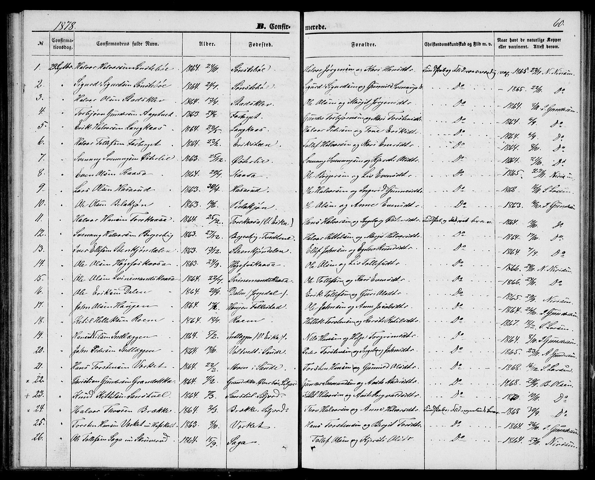 SAKO, Bø kirkebøker, G/Ga/L0004: Klokkerbok nr. 4, 1876-1882, s. 60
