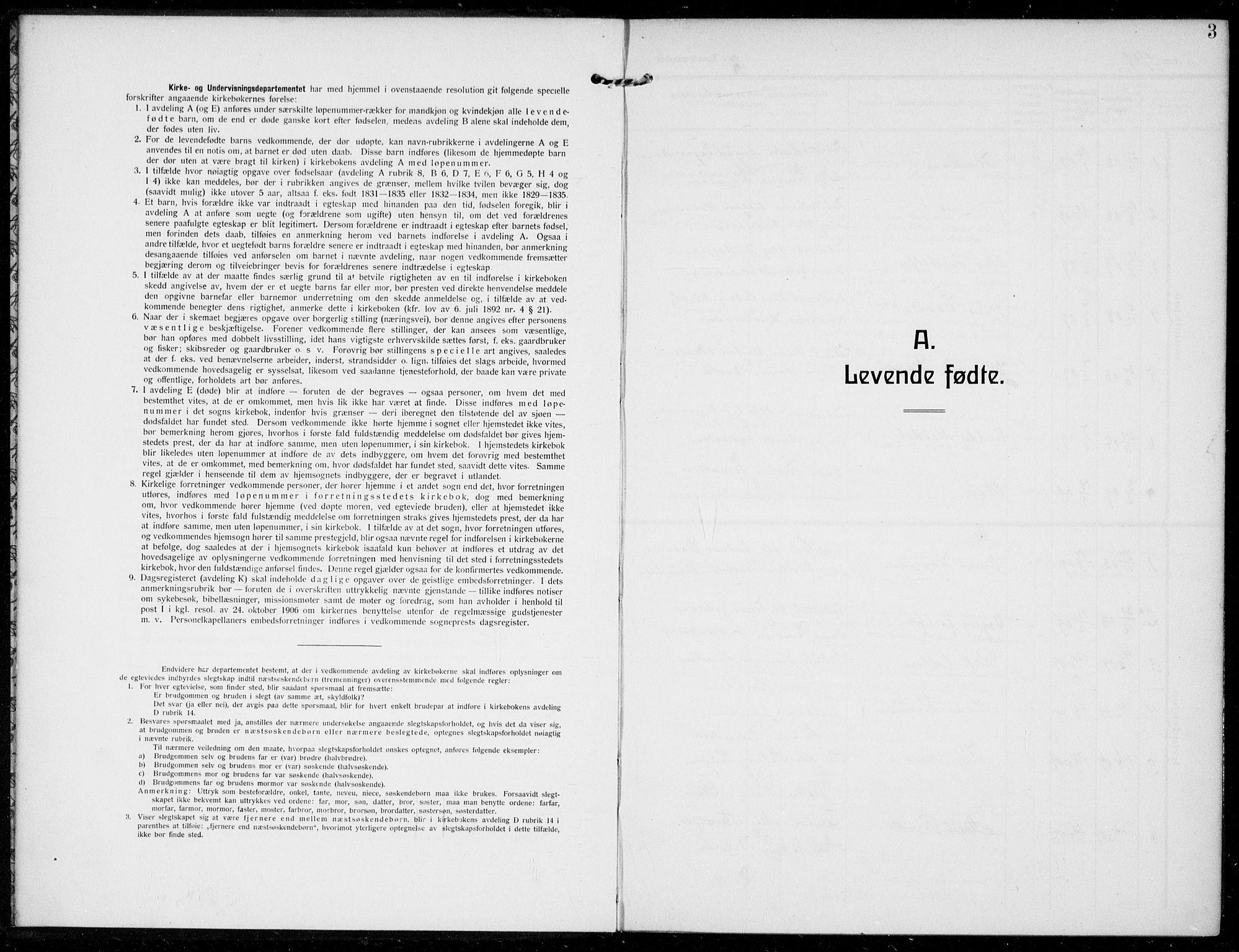 SAKO, Bamble kirkebøker, F/Fc/L0001: Ministerialbok nr. III 1, 1909-1916, s. 3