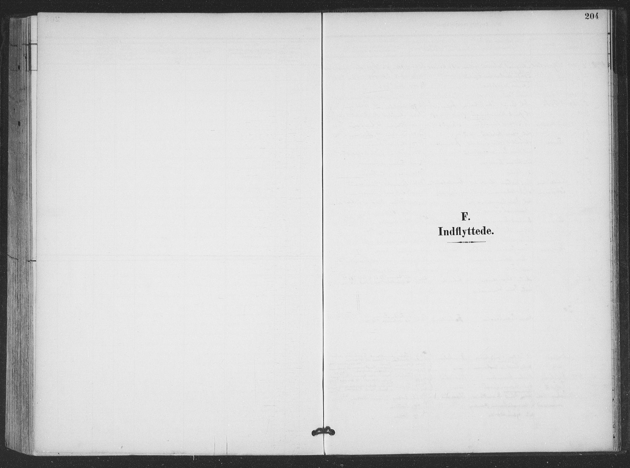 SAT, Ministerialprotokoller, klokkerbøker og fødselsregistre - Nordland, 866/L0939: Ministerialbok nr. 866A02, 1894-1906, s. 204