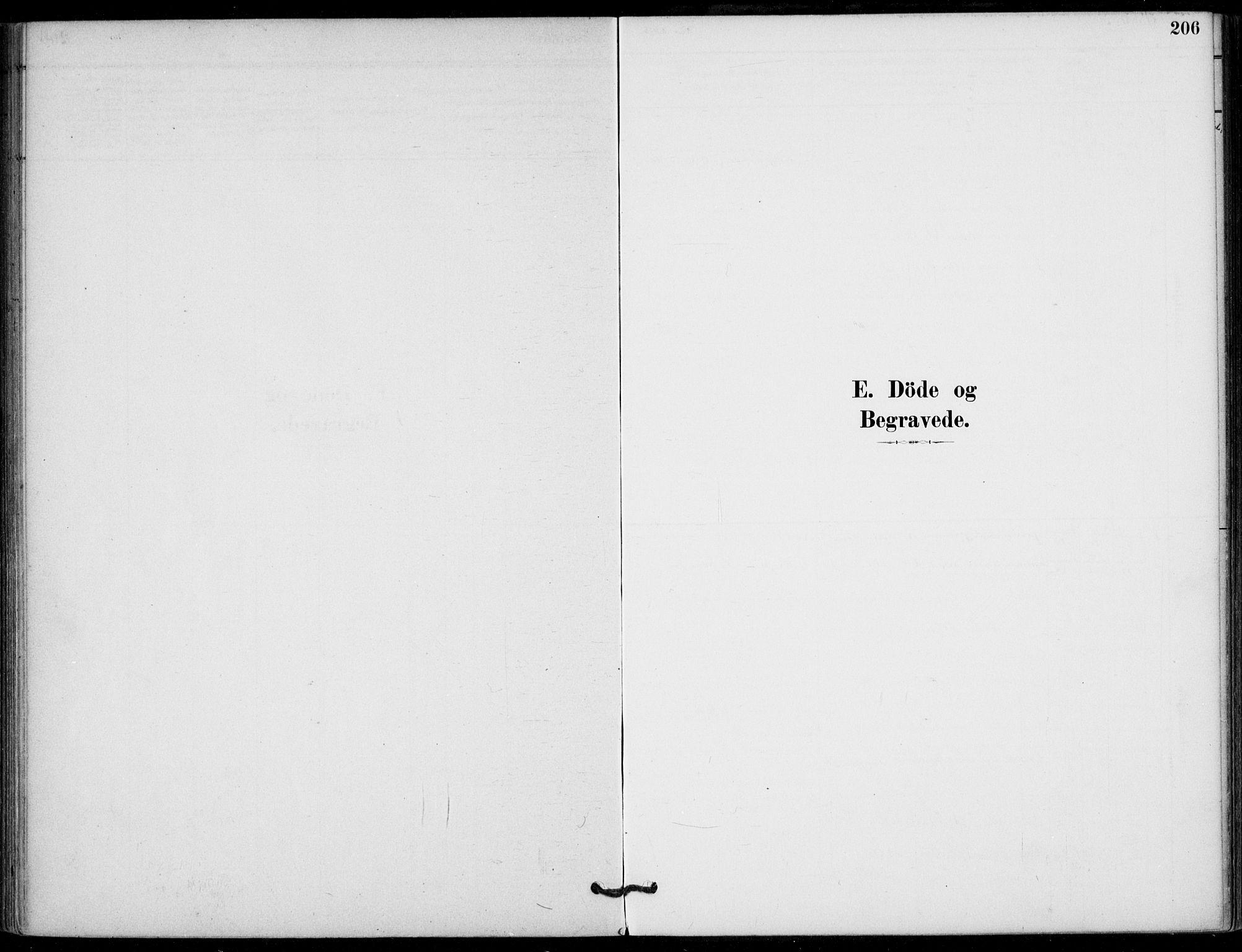 SAKO, Hjartdal kirkebøker, F/Fb/L0002: Ministerialbok nr. II 2, 1880-1932, s. 206
