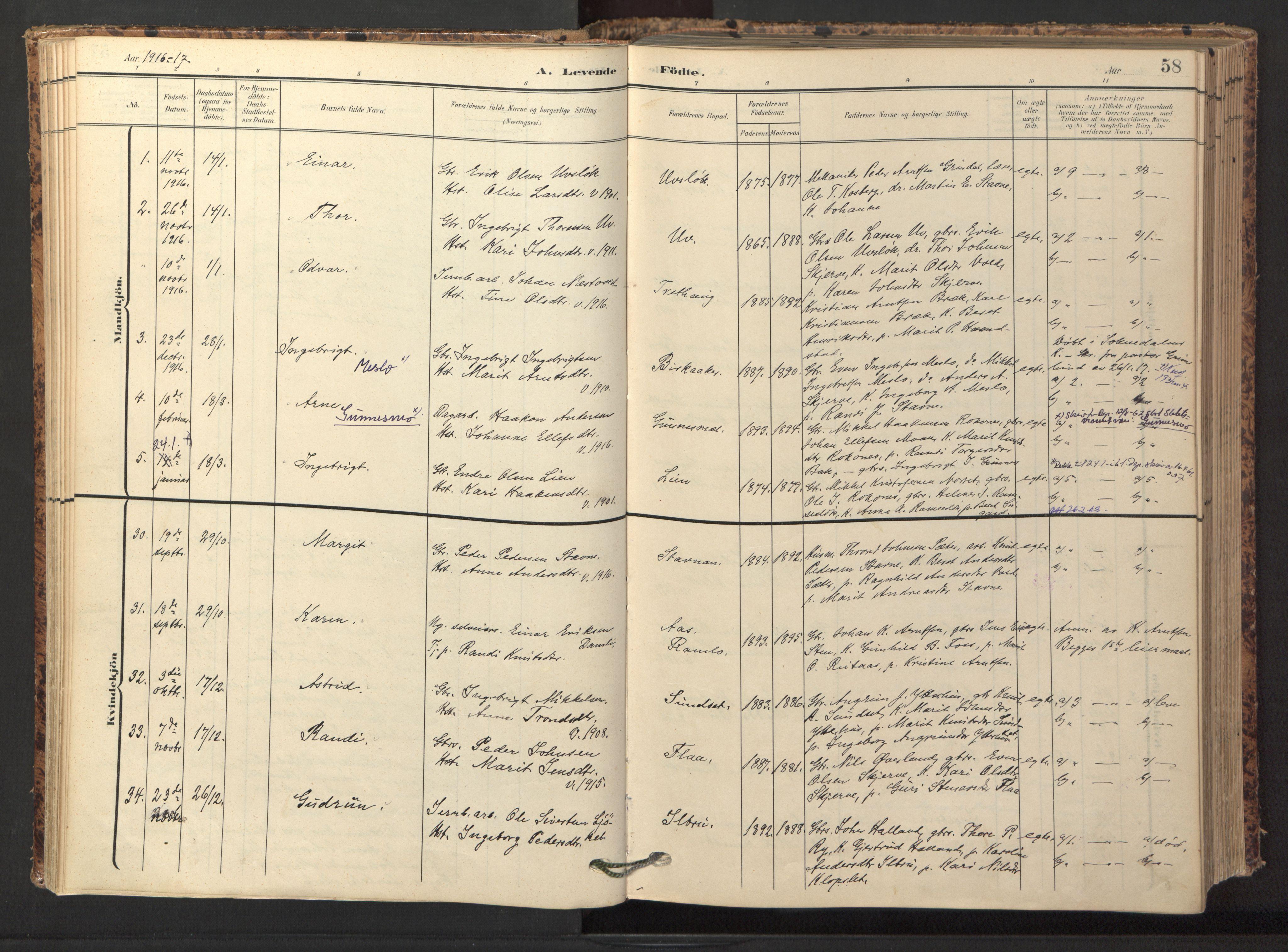 SAT, Ministerialprotokoller, klokkerbøker og fødselsregistre - Sør-Trøndelag, 674/L0873: Ministerialbok nr. 674A05, 1908-1923, s. 58