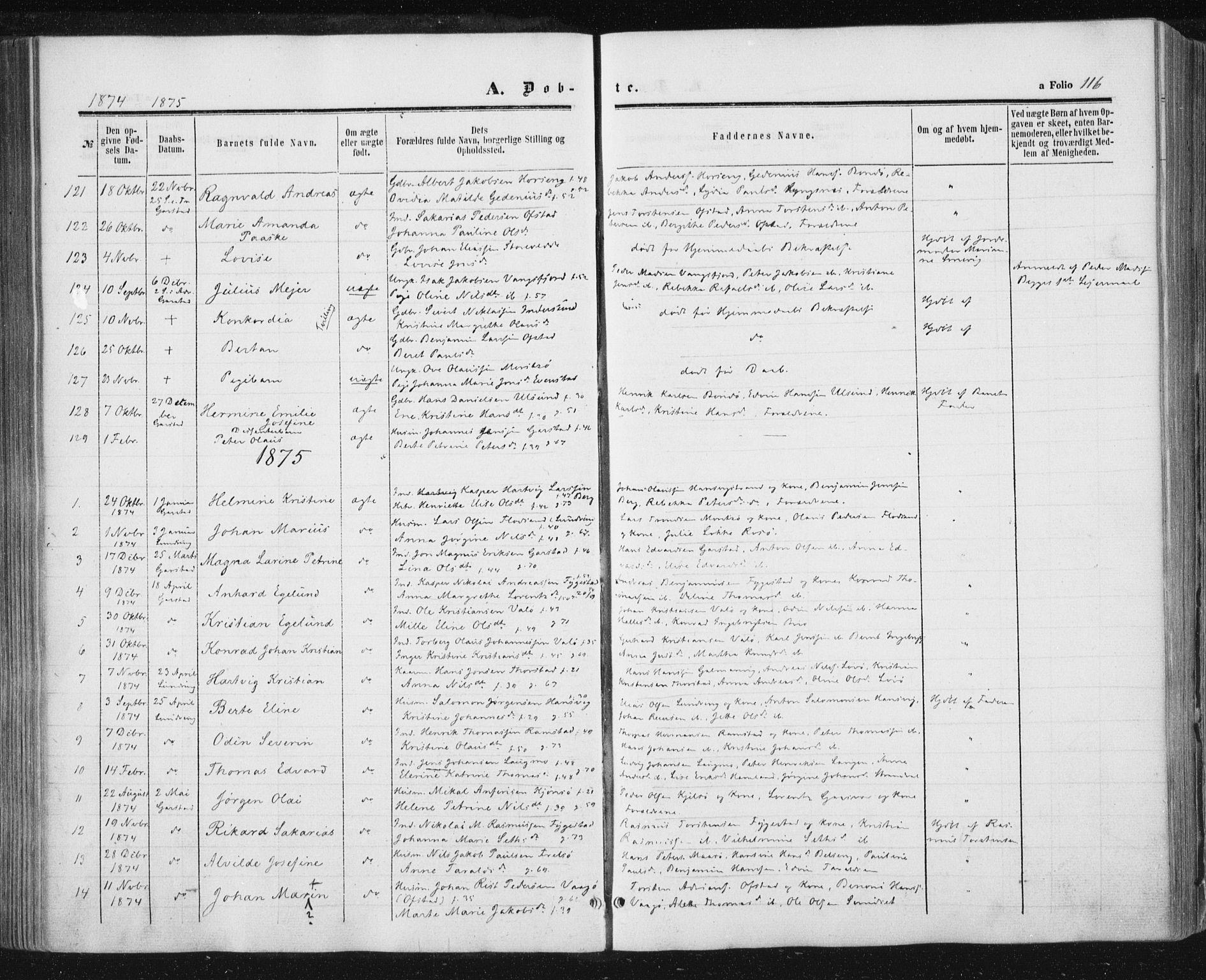 SAT, Ministerialprotokoller, klokkerbøker og fødselsregistre - Nord-Trøndelag, 784/L0670: Ministerialbok nr. 784A05, 1860-1876, s. 116