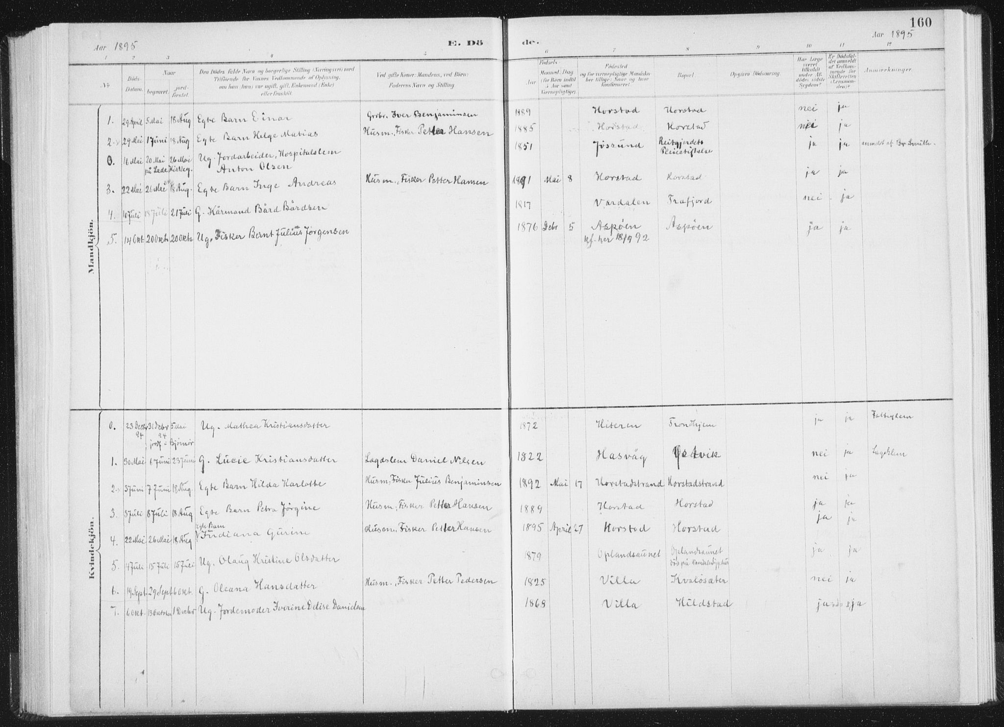 SAT, Ministerialprotokoller, klokkerbøker og fødselsregistre - Nord-Trøndelag, 771/L0597: Ministerialbok nr. 771A04, 1885-1910, s. 160