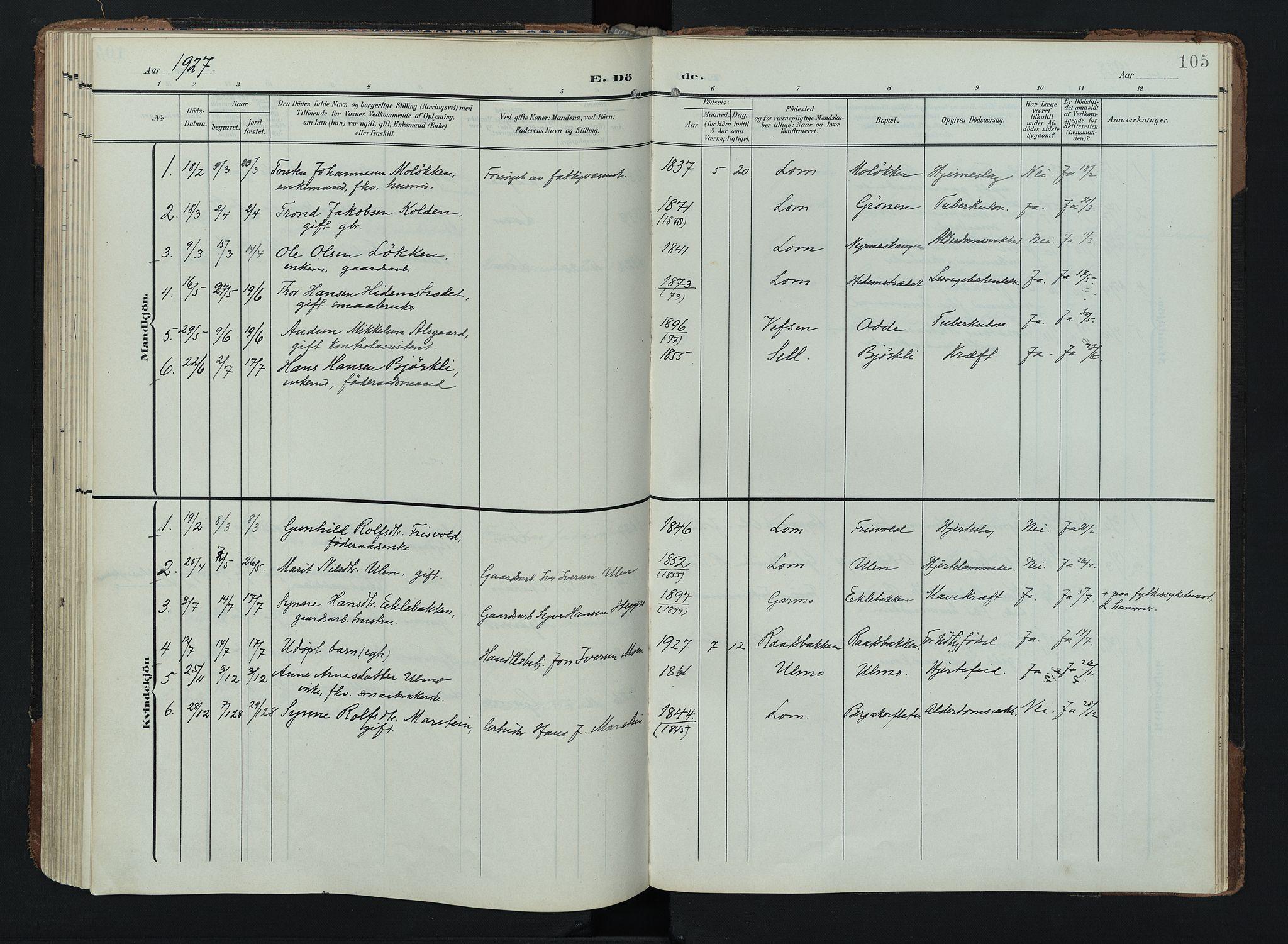 SAH, Lom prestekontor, K/L0011: Ministerialbok nr. 11, 1904-1928, s. 105