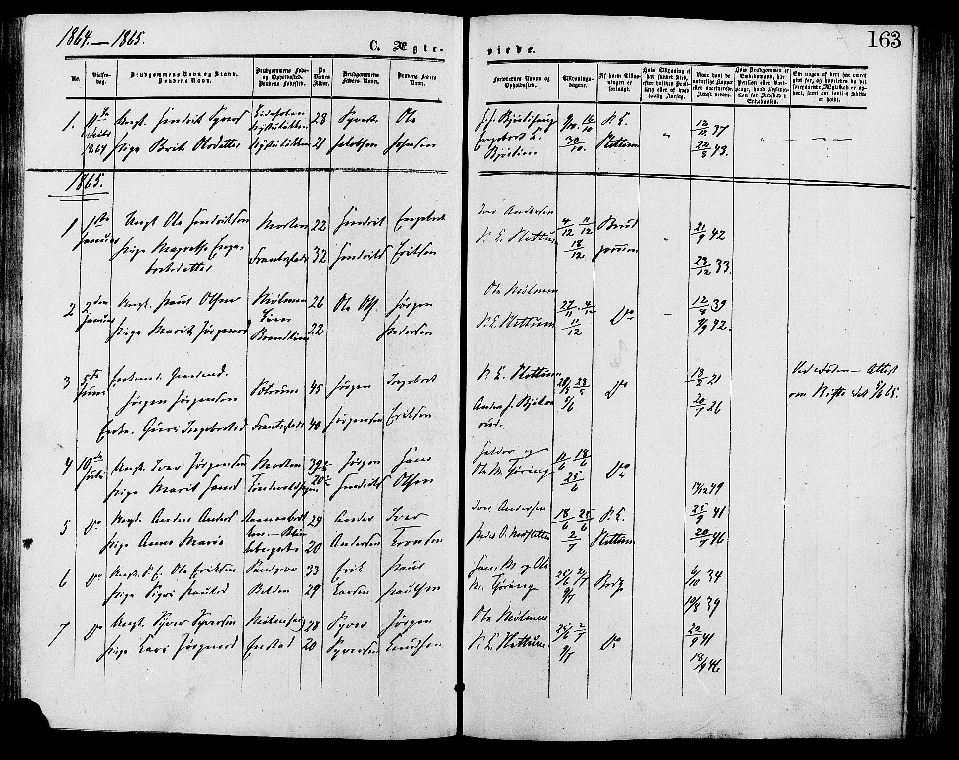 SAH, Lesja prestekontor, Ministerialbok nr. 9, 1854-1889, s. 163