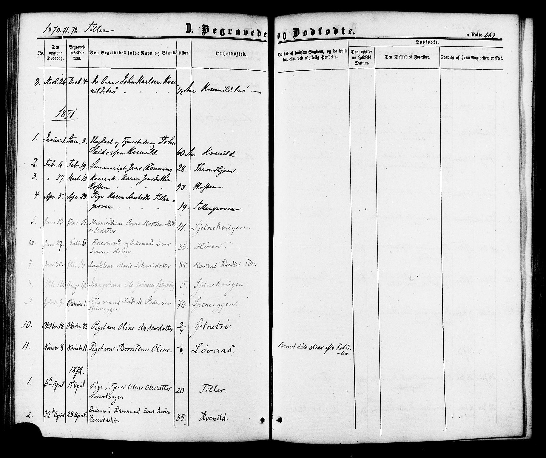 SAT, Ministerialprotokoller, klokkerbøker og fødselsregistre - Sør-Trøndelag, 618/L0443: Ministerialbok nr. 618A06 /2, 1863-1879, s. 263