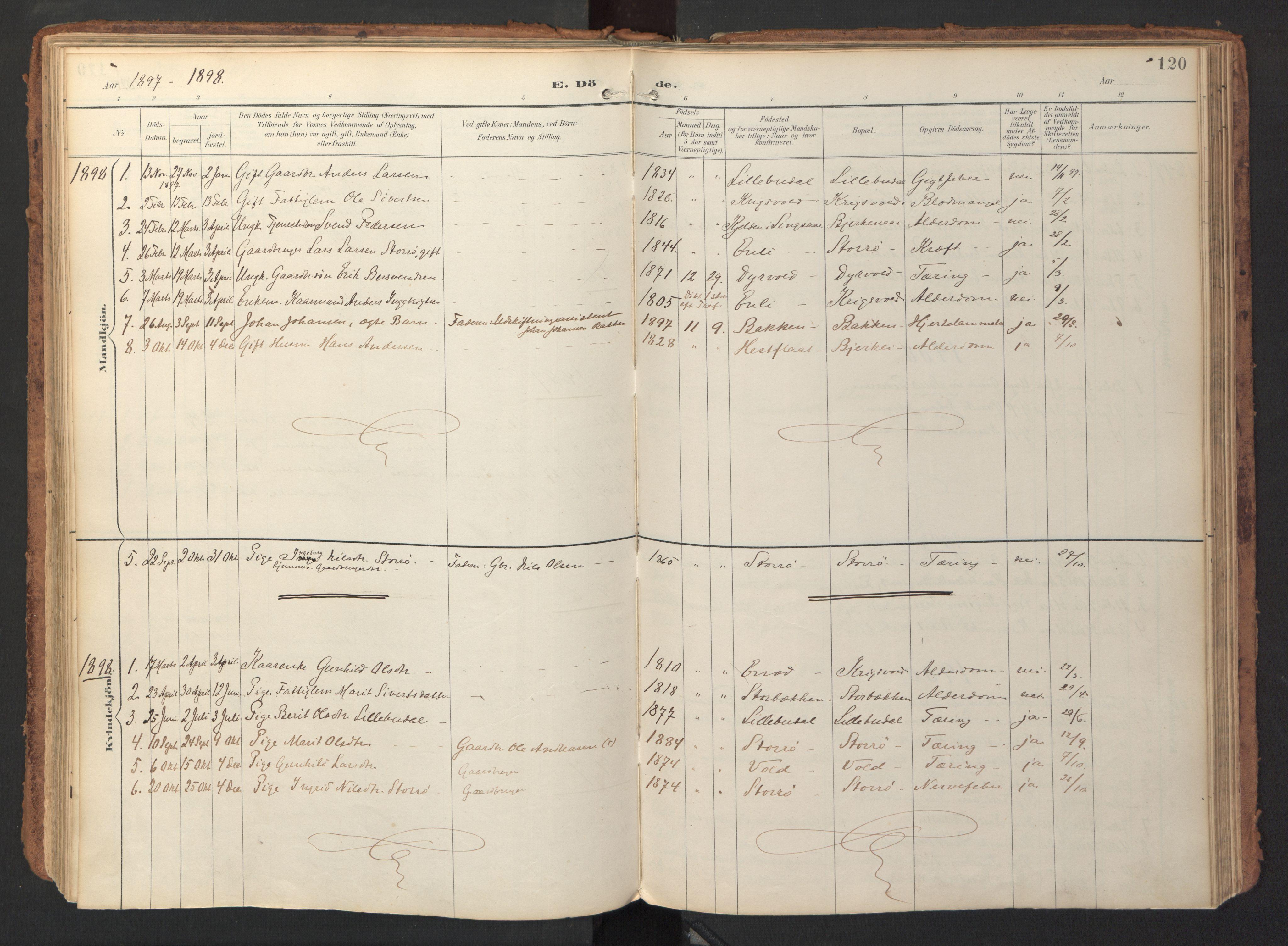 SAT, Ministerialprotokoller, klokkerbøker og fødselsregistre - Sør-Trøndelag, 690/L1050: Ministerialbok nr. 690A01, 1889-1929, s. 120