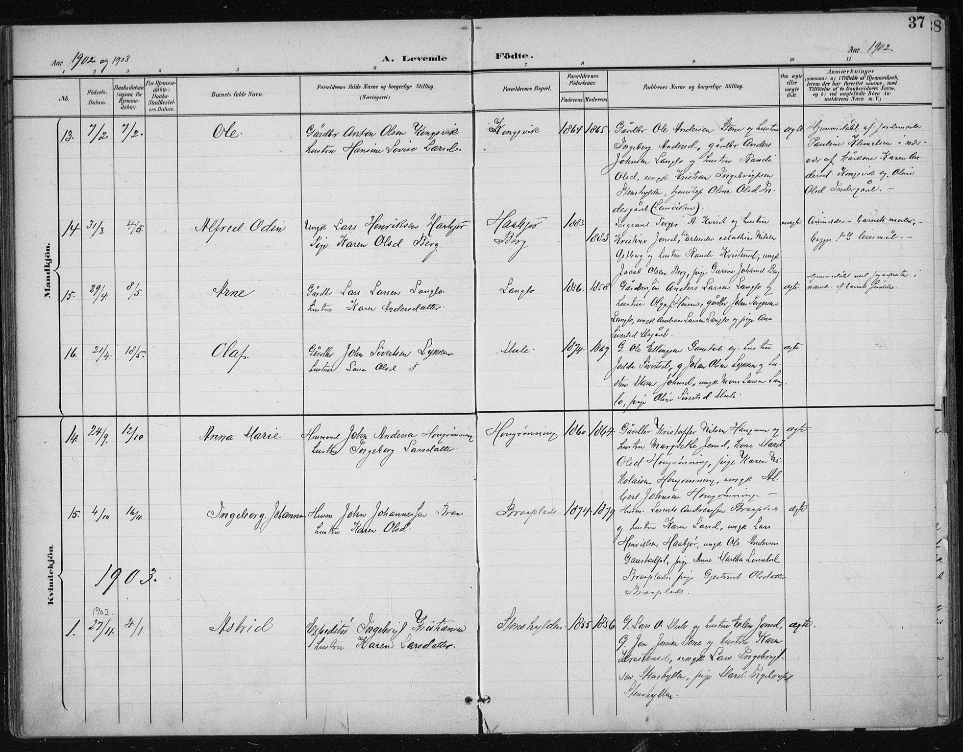 SAT, Ministerialprotokoller, klokkerbøker og fødselsregistre - Sør-Trøndelag, 612/L0380: Ministerialbok nr. 612A12, 1898-1907, s. 37