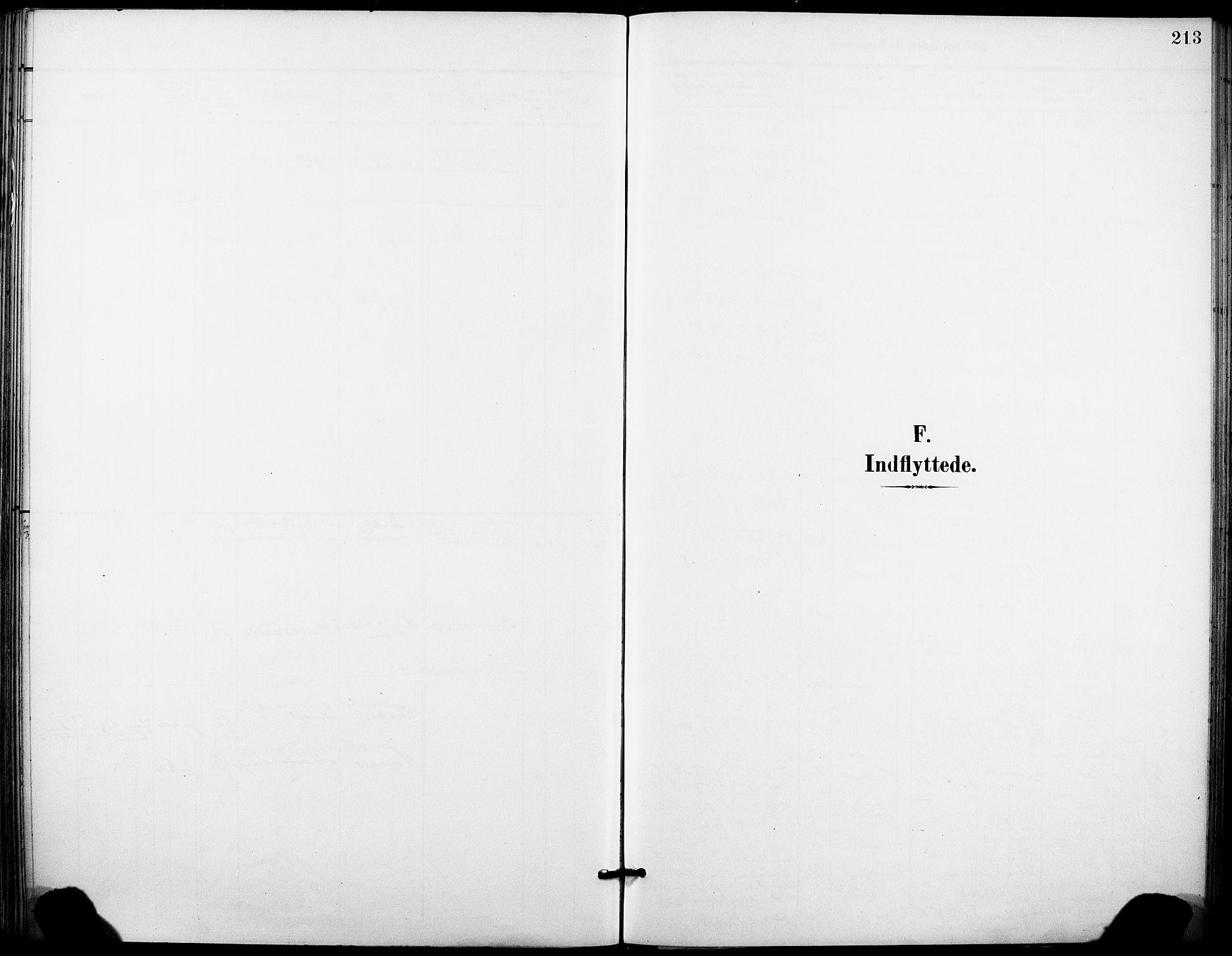 SAKO, Holla kirkebøker, F/Fa/L0010: Ministerialbok nr. 10, 1897-1907, s. 213