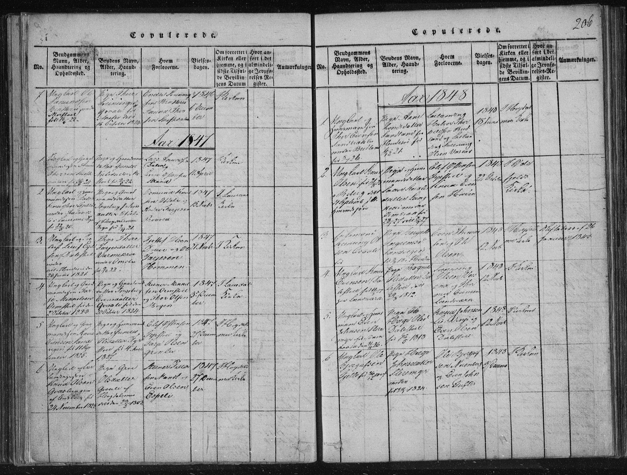 SAKO, Lårdal kirkebøker, F/Fc/L0001: Ministerialbok nr. III 1, 1815-1860, s. 206