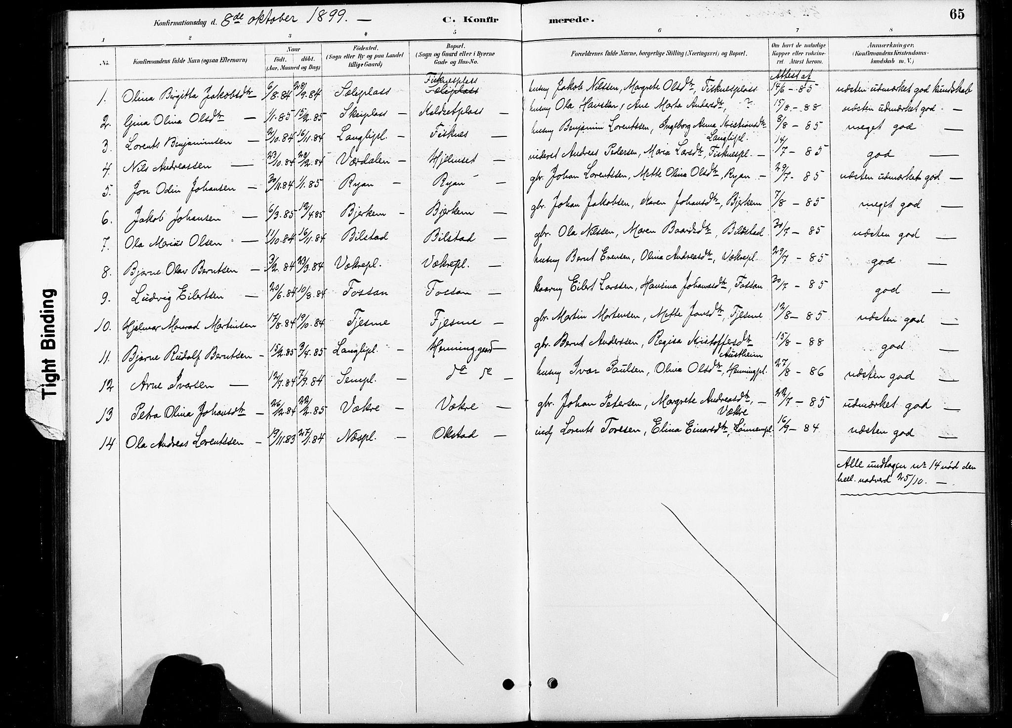 SAT, Ministerialprotokoller, klokkerbøker og fødselsregistre - Nord-Trøndelag, 738/L0364: Ministerialbok nr. 738A01, 1884-1902, s. 65