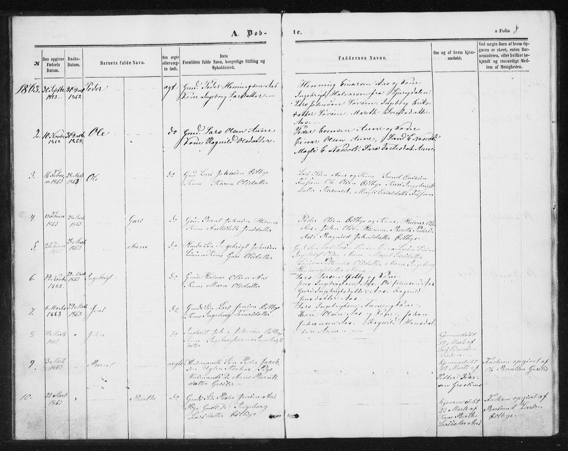 SAT, Ministerialprotokoller, klokkerbøker og fødselsregistre - Sør-Trøndelag, 698/L1166: Klokkerbok nr. 698C03, 1861-1887, s. 8