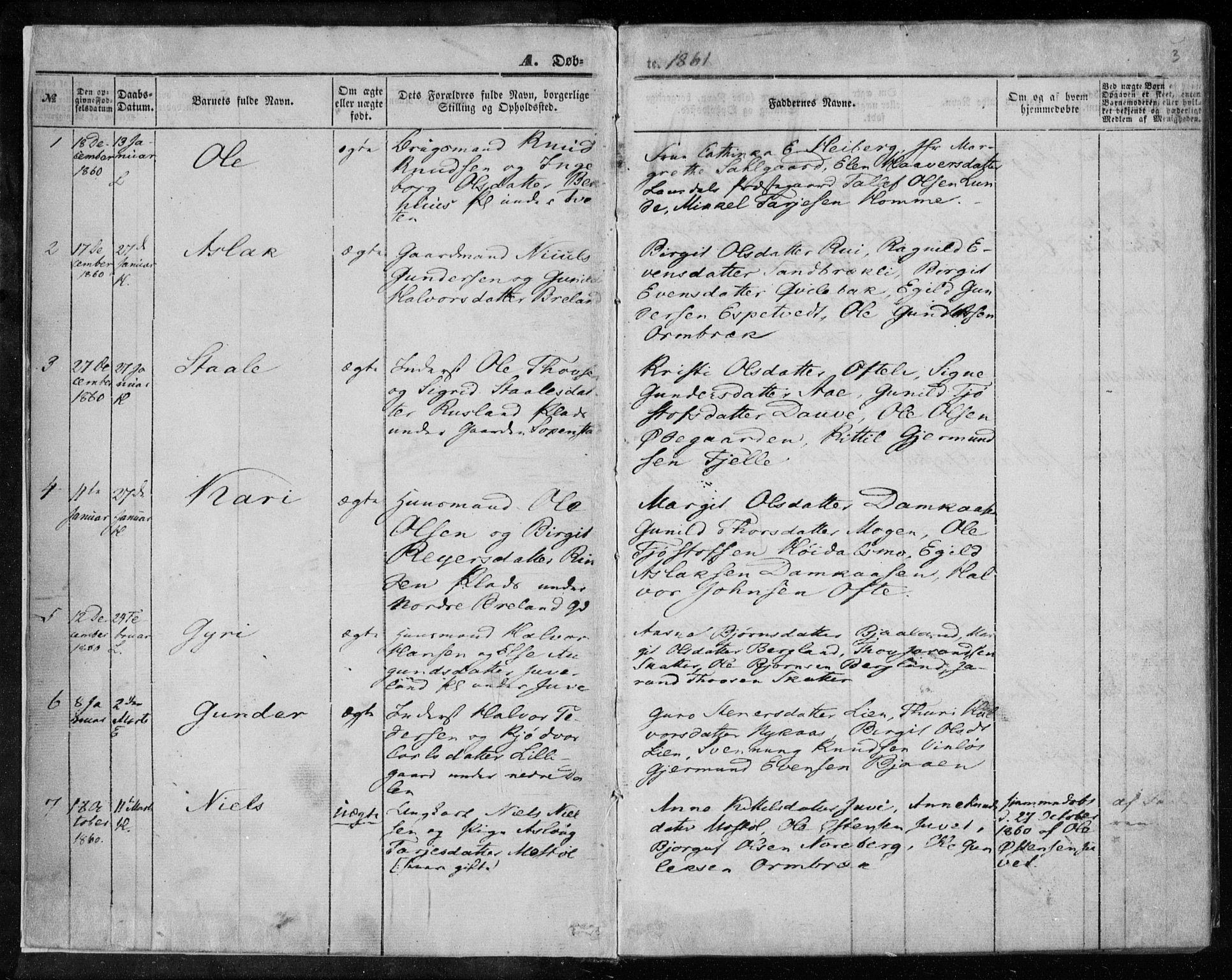 SAKO, Lårdal kirkebøker, F/Fa/L0006: Ministerialbok nr. I 6, 1861-1886, s. 3