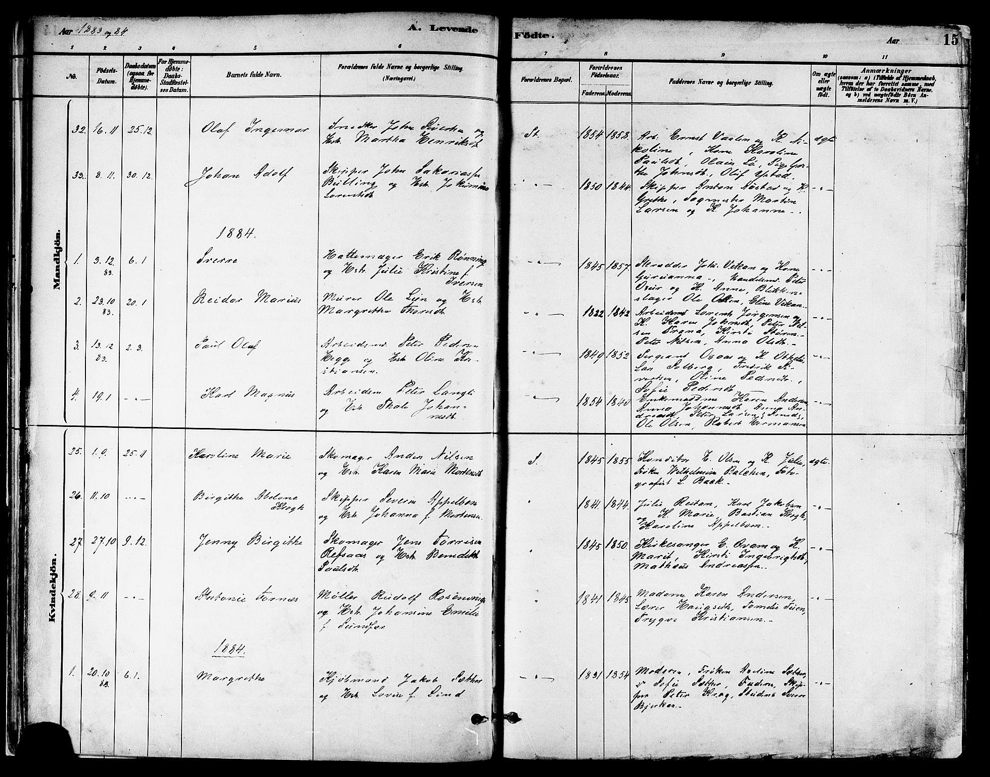 SAT, Ministerialprotokoller, klokkerbøker og fødselsregistre - Nord-Trøndelag, 739/L0371: Ministerialbok nr. 739A03, 1881-1895, s. 15