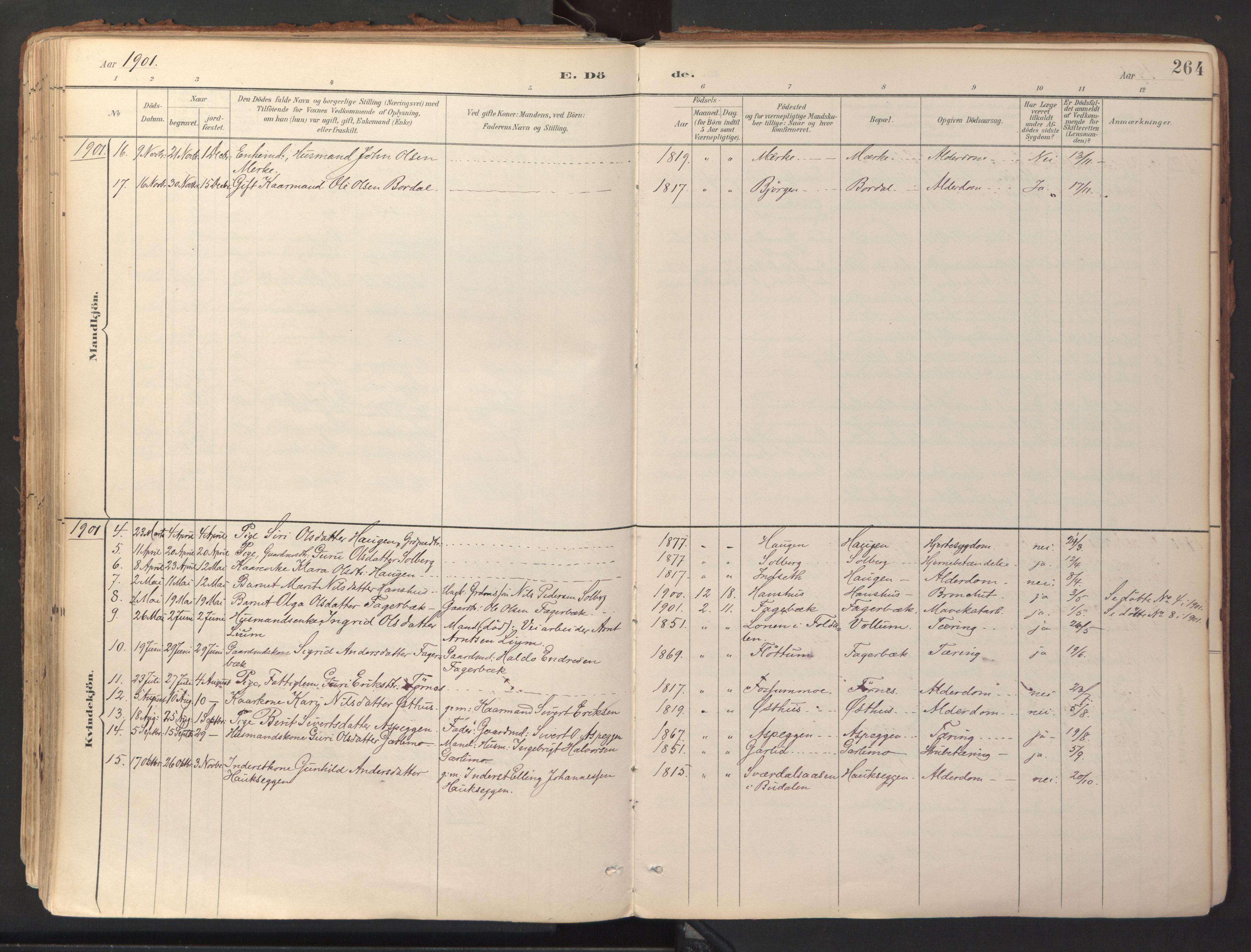 SAT, Ministerialprotokoller, klokkerbøker og fødselsregistre - Sør-Trøndelag, 689/L1041: Ministerialbok nr. 689A06, 1891-1923, s. 264