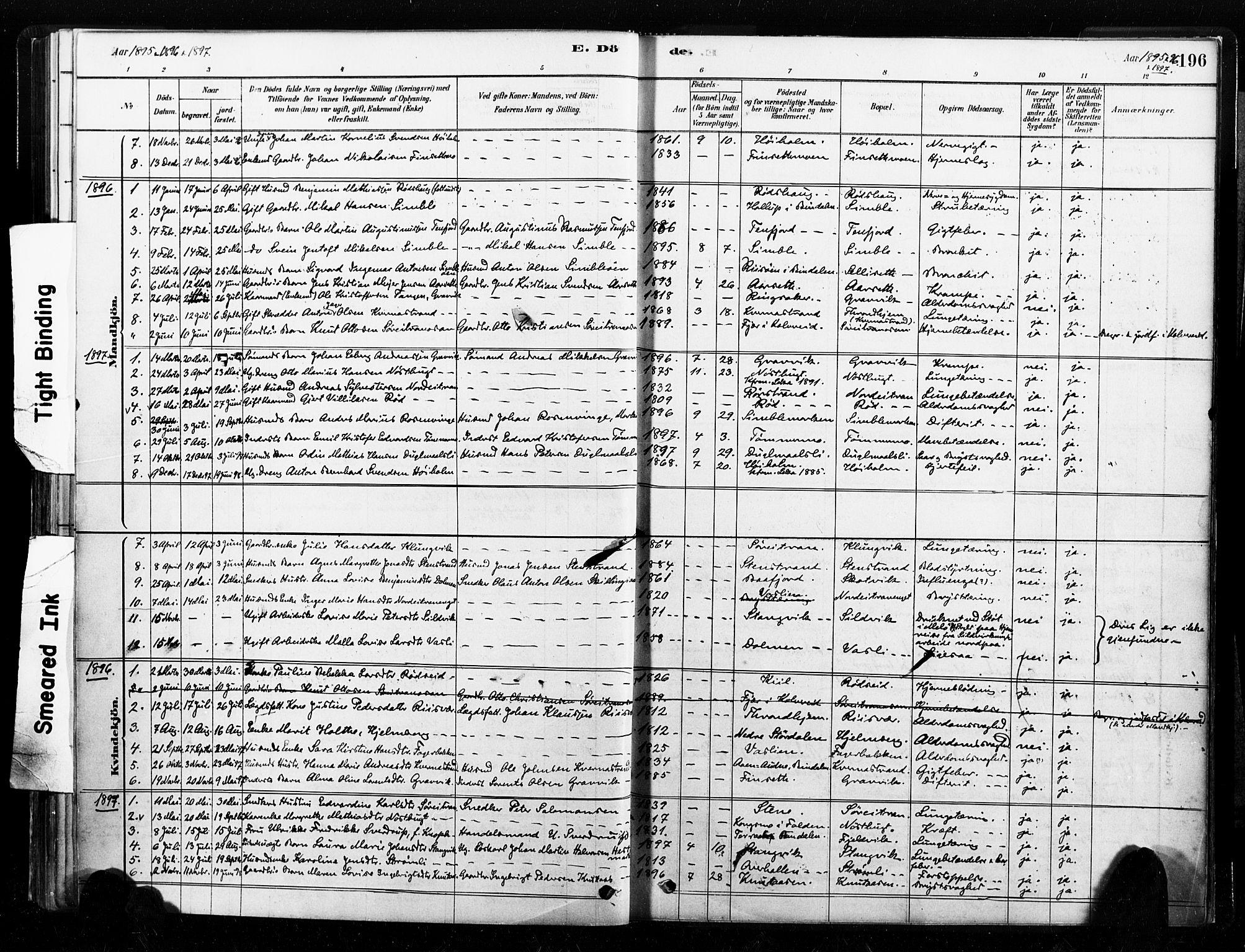 SAT, Ministerialprotokoller, klokkerbøker og fødselsregistre - Nord-Trøndelag, 789/L0705: Ministerialbok nr. 789A01, 1878-1910, s. 196