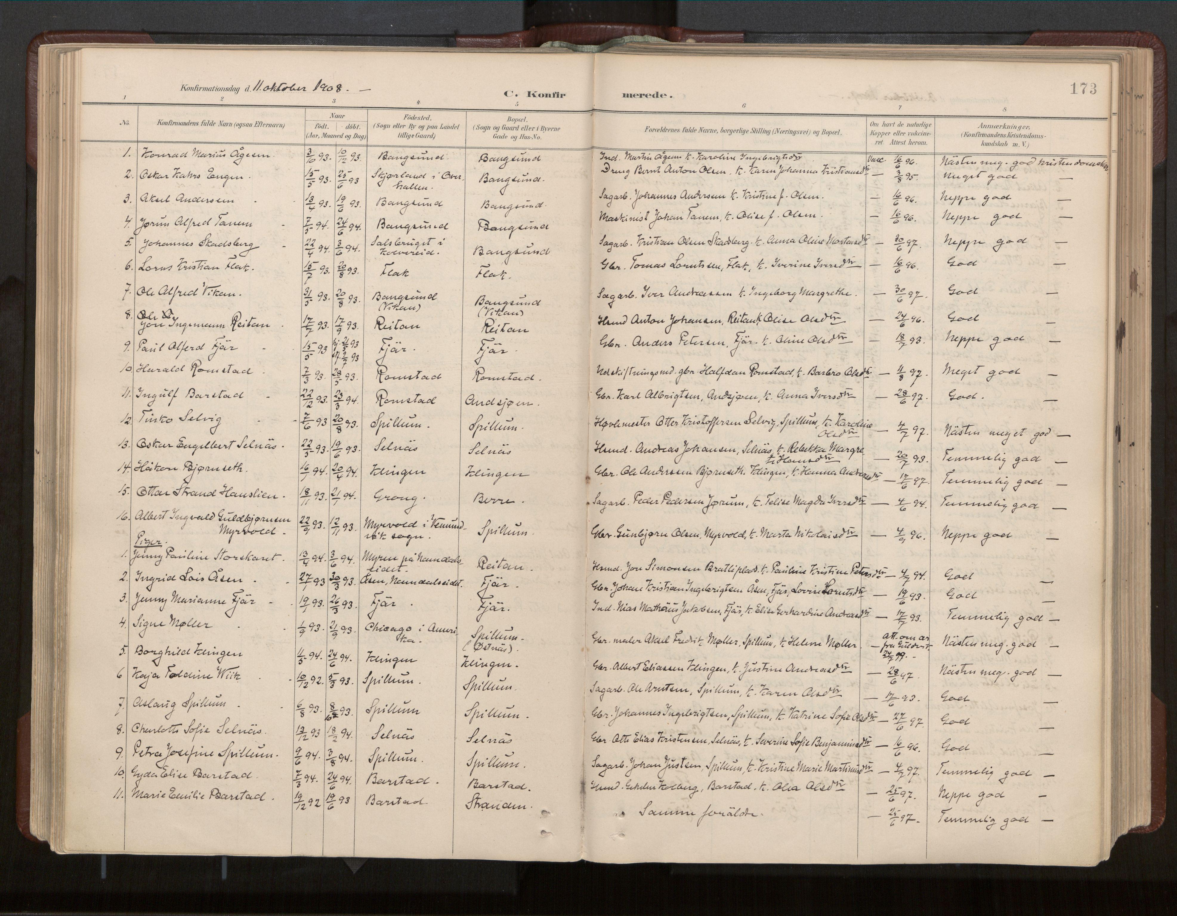 SAT, Ministerialprotokoller, klokkerbøker og fødselsregistre - Nord-Trøndelag, 770/L0589: Ministerialbok nr. 770A03, 1887-1929, s. 173
