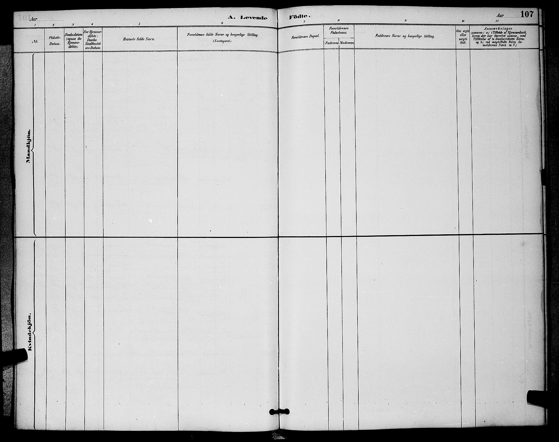 SAKO, Sigdal kirkebøker, G/Ga/L0005: Klokkerbok nr. I 5, 1886-1900, s. 107
