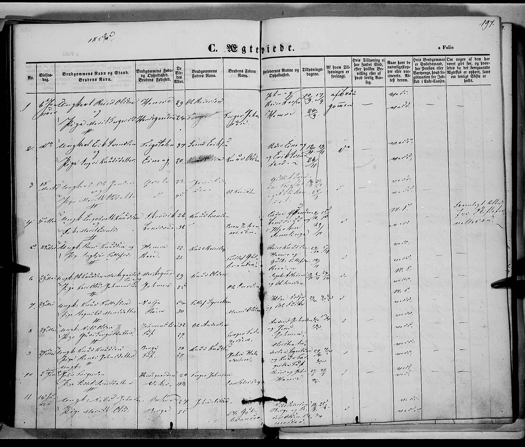 SAH, Vestre Slidre prestekontor, Ministerialbok nr. 1, 1844-1855, s. 197