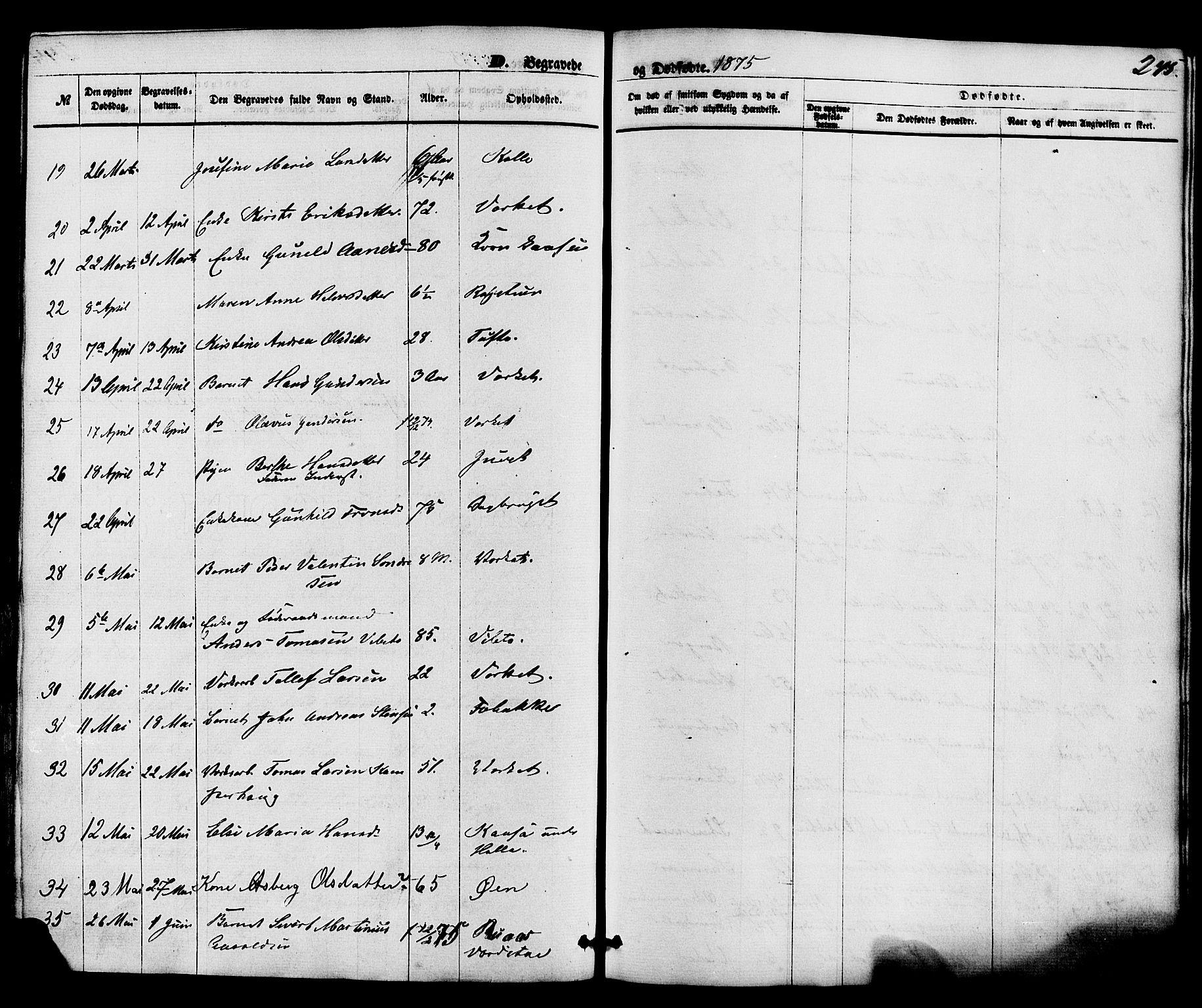 SAKO, Holla kirkebøker, F/Fa/L0007: Ministerialbok nr. 7, 1869-1881, s. 245