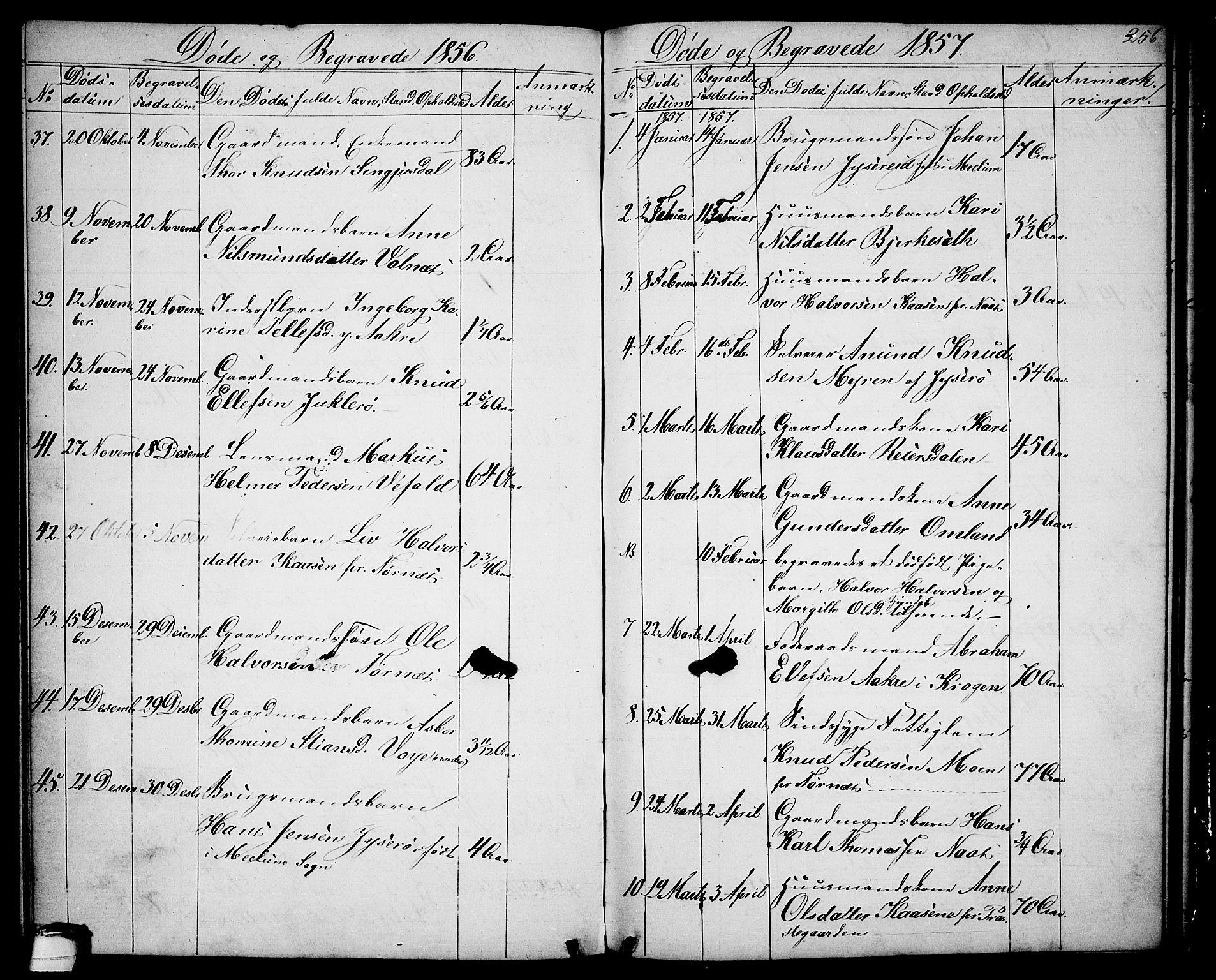 SAKO, Drangedal kirkebøker, G/Ga/L0002: Klokkerbok nr. I 2, 1856-1887, s. 256