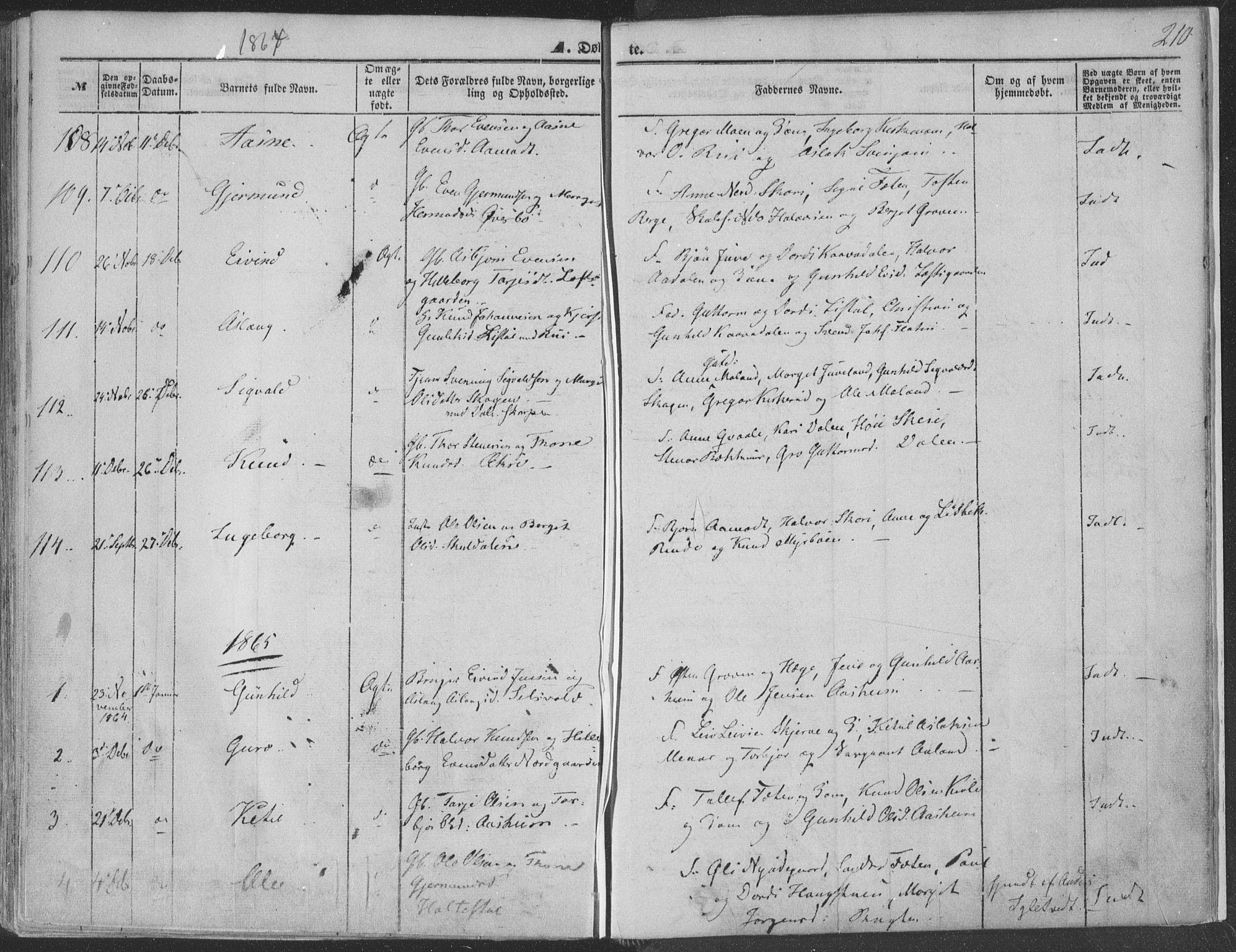 SAKO, Seljord kirkebøker, F/Fa/L012a: Ministerialbok nr. I 12A, 1850-1865, s. 210