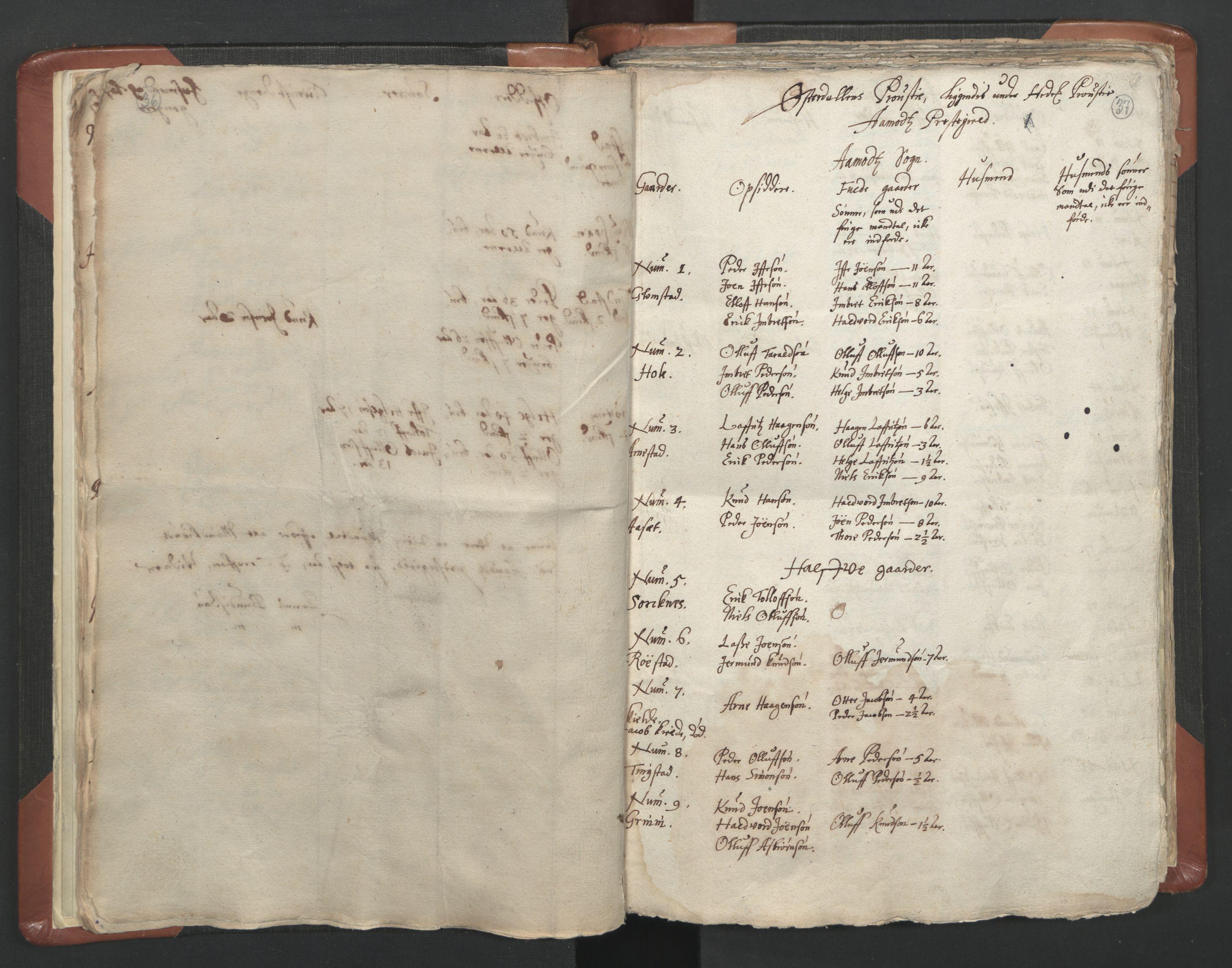 RA, Sogneprestenes manntall 1664-1666, nr. 5: Hedmark prosti, 1664-1666, s. 36-37