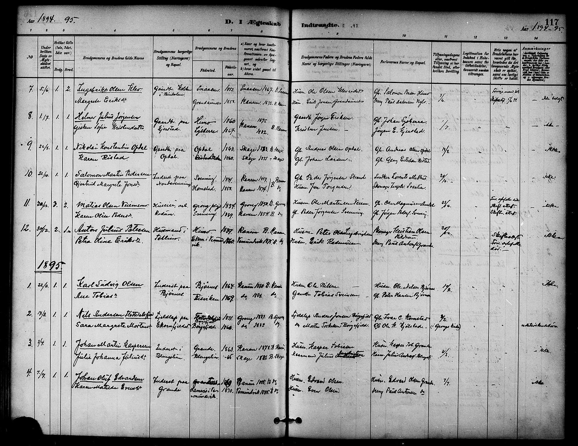 SAT, Ministerialprotokoller, klokkerbøker og fødselsregistre - Nord-Trøndelag, 764/L0555: Ministerialbok nr. 764A10, 1881-1896, s. 117