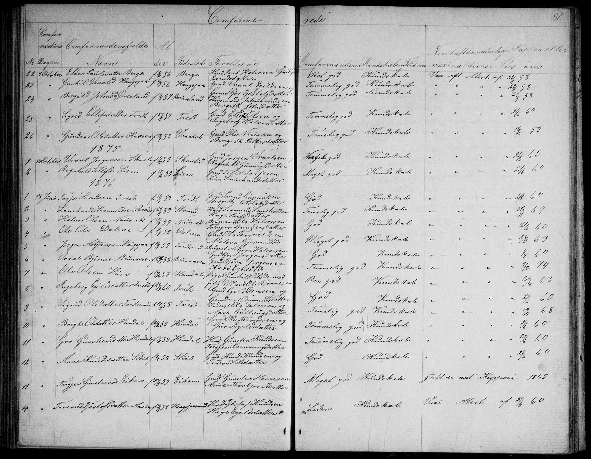 SAKO, Nissedal kirkebøker, G/Gb/L0002: Klokkerbok nr. II 2, 1863-1892, s. 80