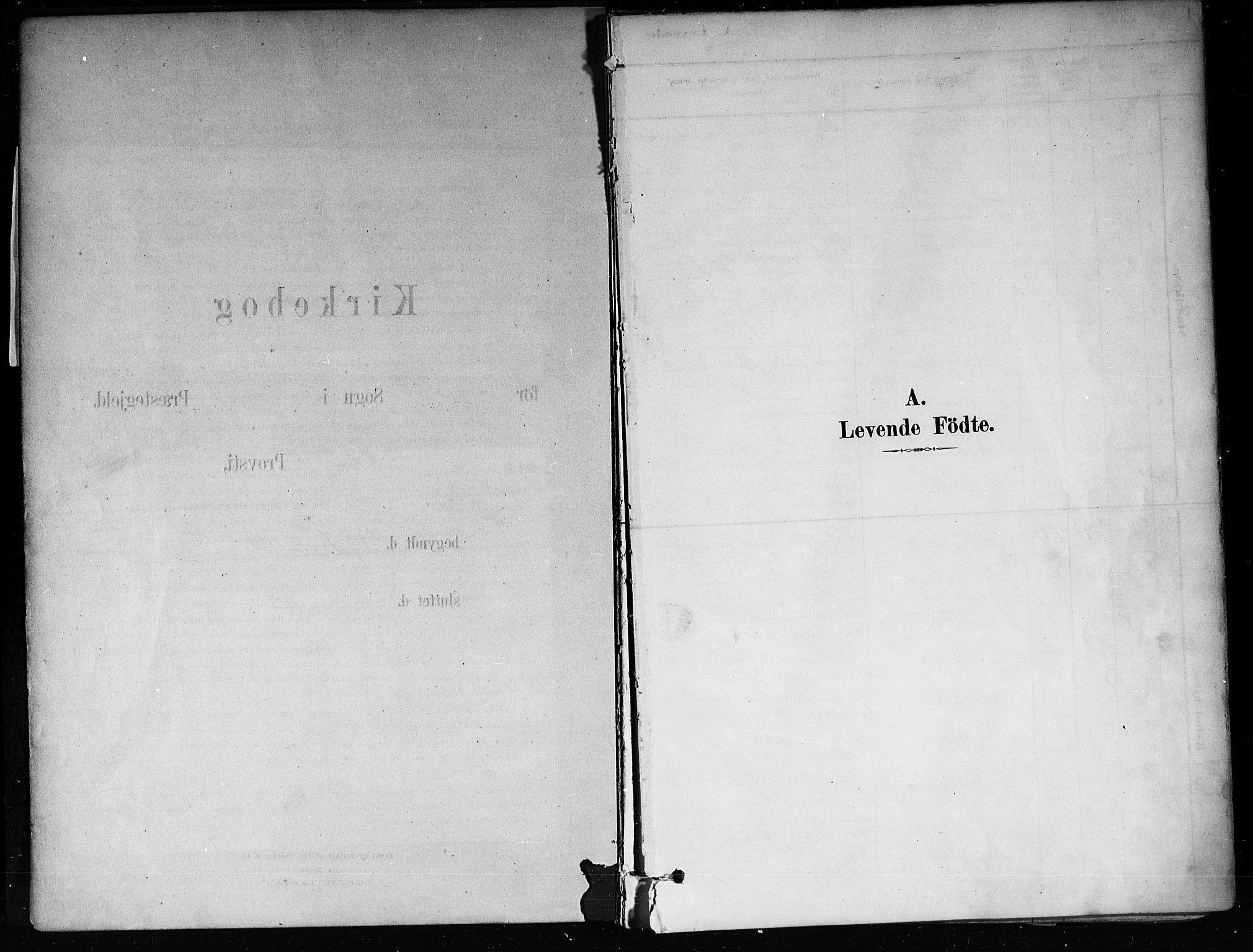 SAKO, Røyken kirkebøker, F/Fa/L0008: Ministerialbok nr. 8, 1880-1897