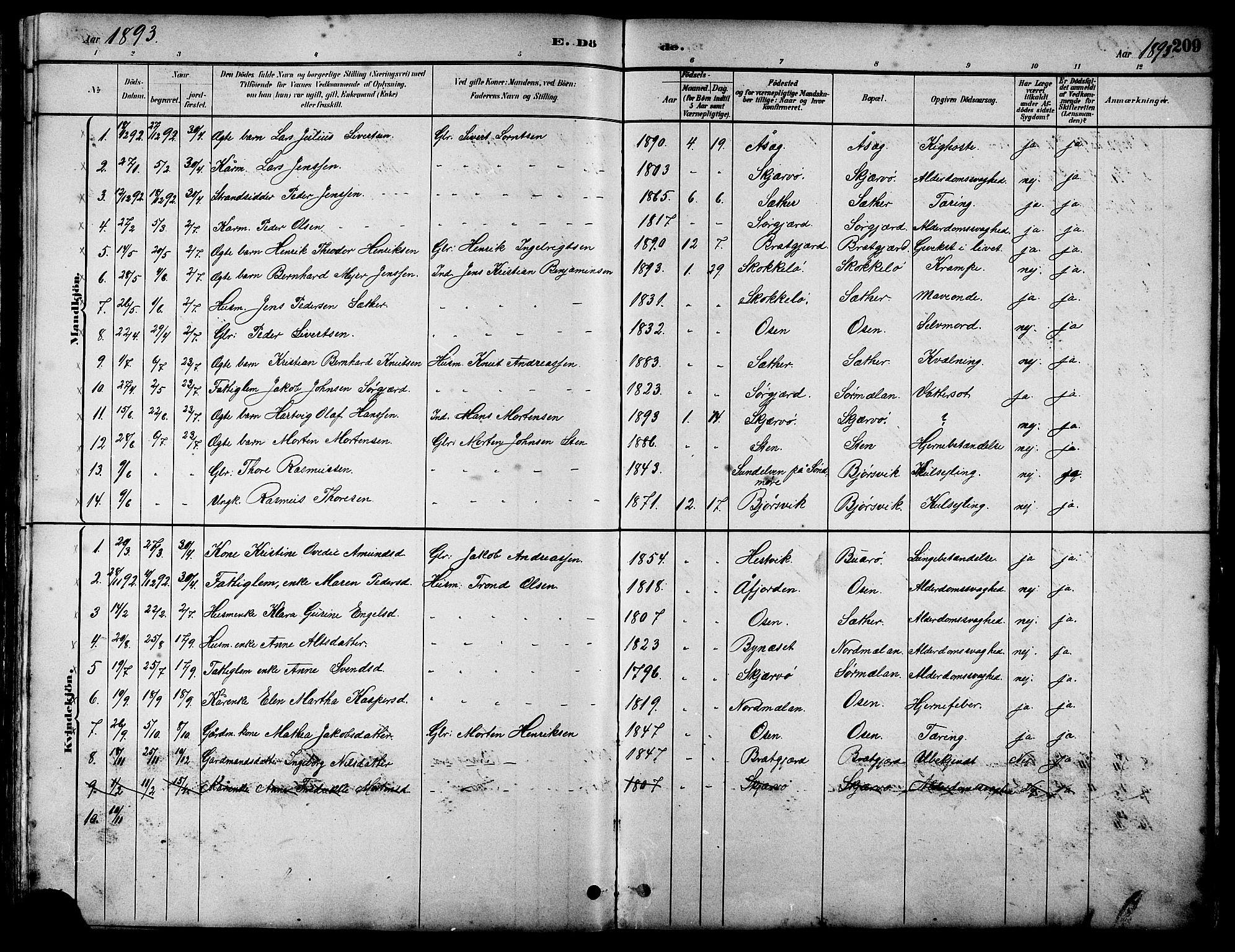 SAT, Ministerialprotokoller, klokkerbøker og fødselsregistre - Sør-Trøndelag, 658/L0726: Klokkerbok nr. 658C02, 1883-1908, s. 209