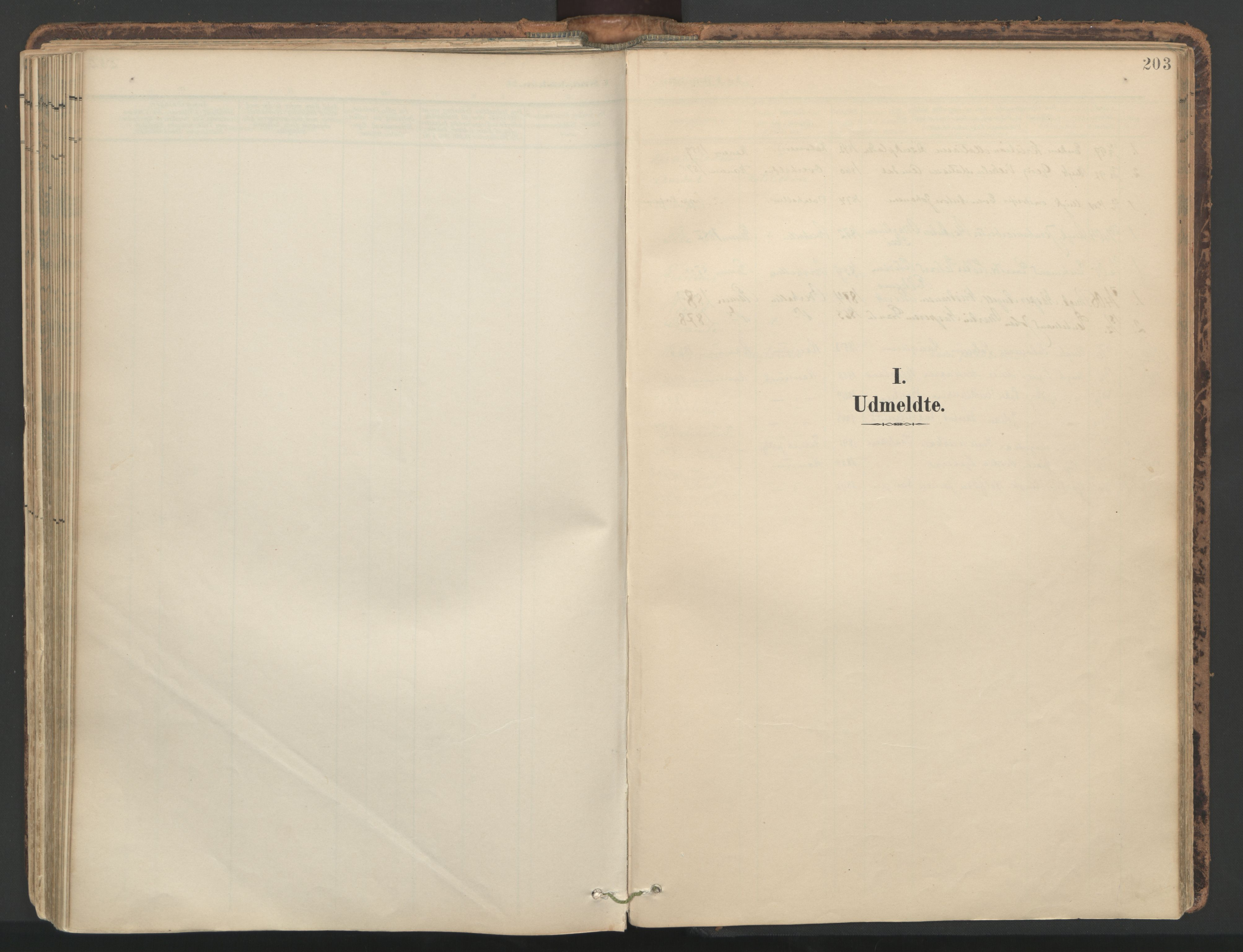 SAT, Ministerialprotokoller, klokkerbøker og fødselsregistre - Nord-Trøndelag, 764/L0556: Ministerialbok nr. 764A11, 1897-1924, s. 203