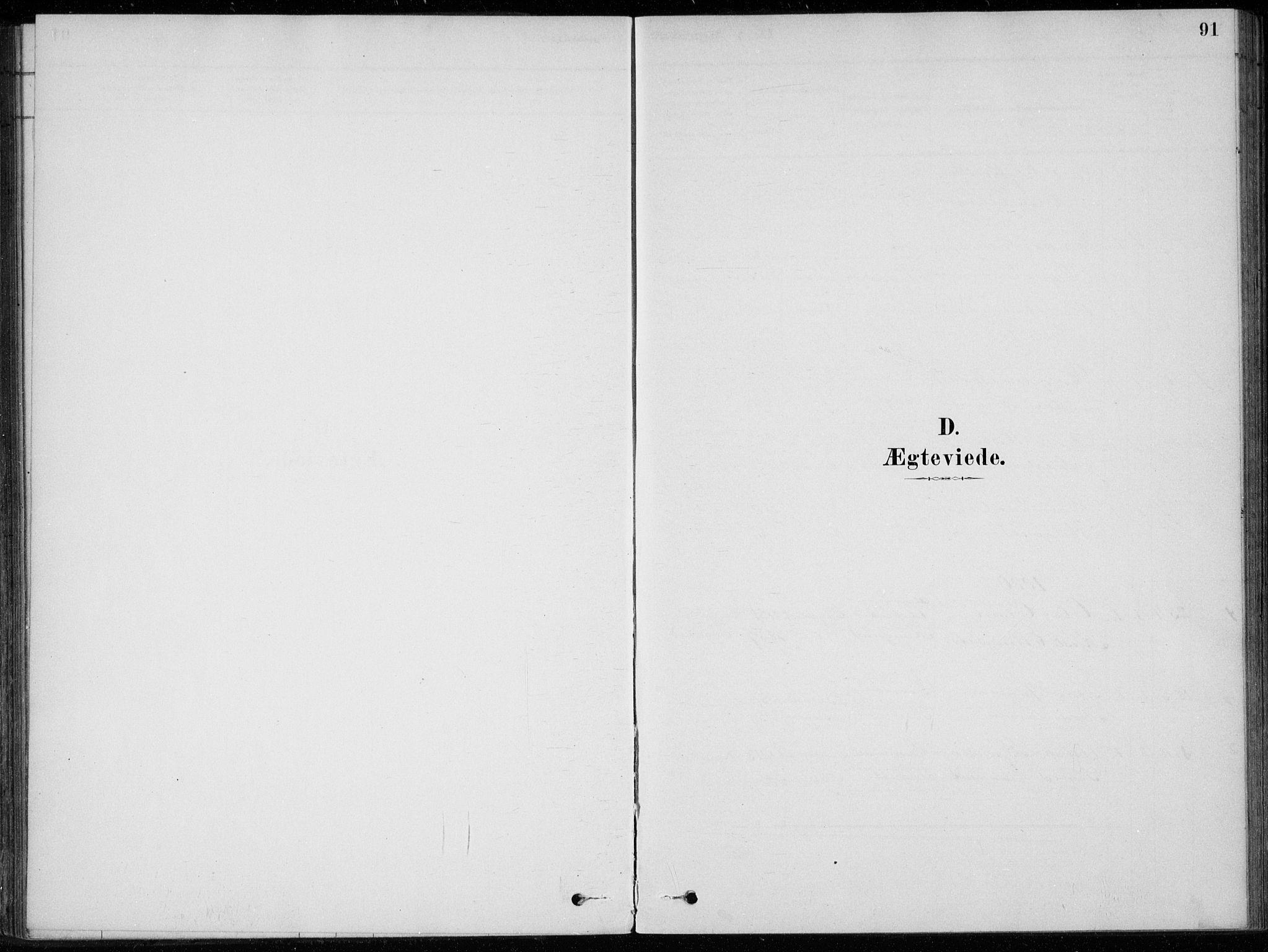 SAKO, Sigdal kirkebøker, F/Fc/L0001: Ministerialbok nr. III 1, 1879-1893, s. 91