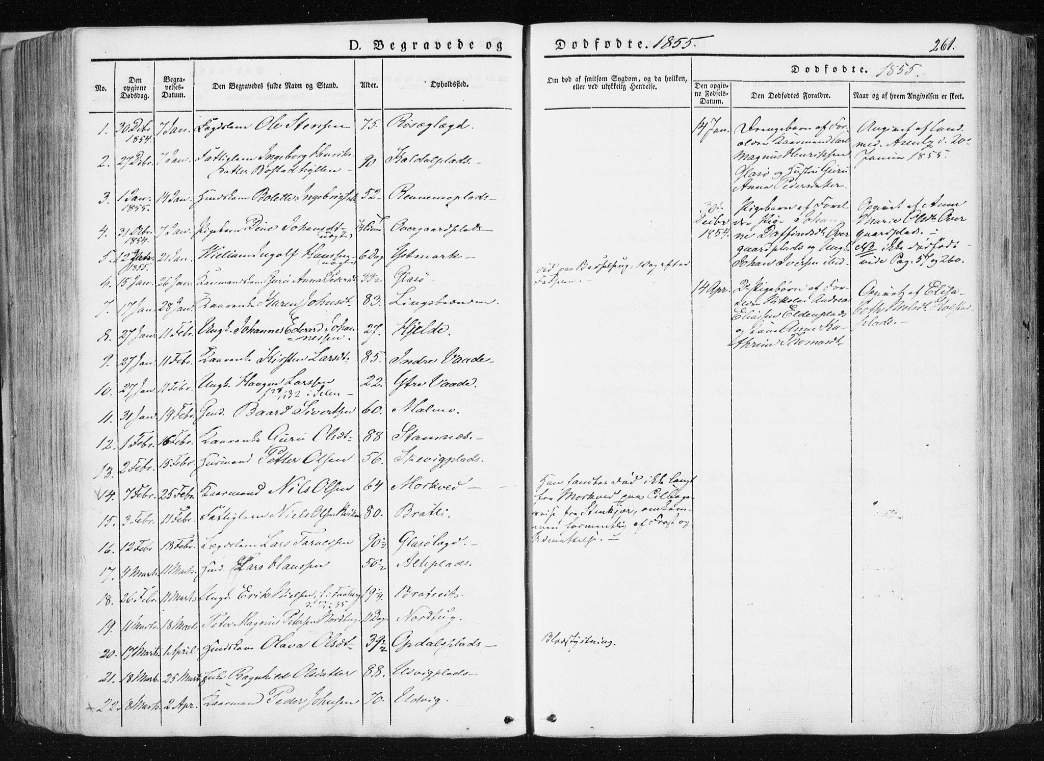 SAT, Ministerialprotokoller, klokkerbøker og fødselsregistre - Nord-Trøndelag, 741/L0393: Ministerialbok nr. 741A07, 1849-1863, s. 261