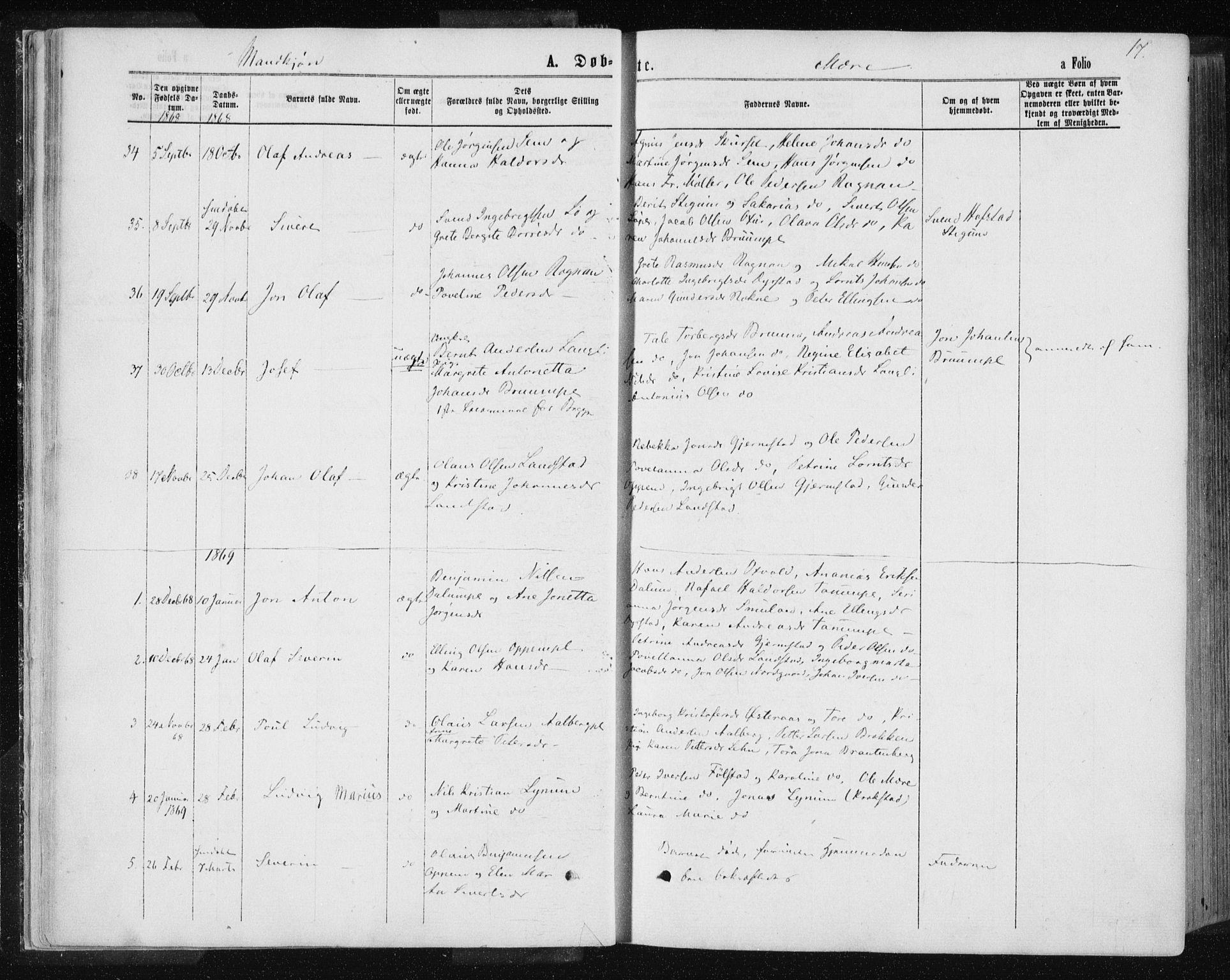 SAT, Ministerialprotokoller, klokkerbøker og fødselsregistre - Nord-Trøndelag, 735/L0345: Ministerialbok nr. 735A08 /1, 1863-1872, s. 17