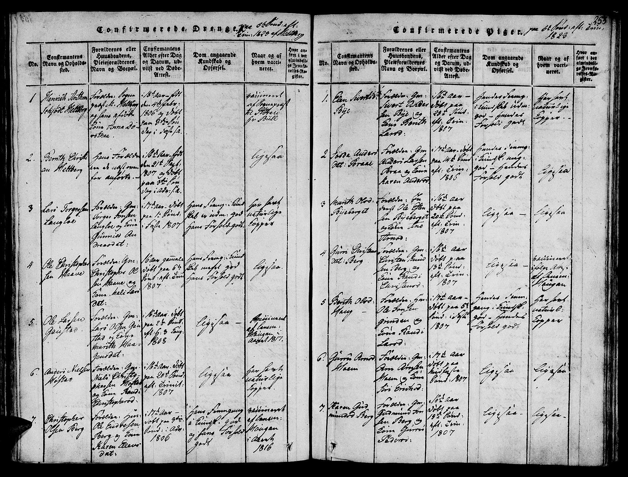 SAT, Ministerialprotokoller, klokkerbøker og fødselsregistre - Sør-Trøndelag, 612/L0372: Ministerialbok nr. 612A06 /1, 1816-1828, s. 253