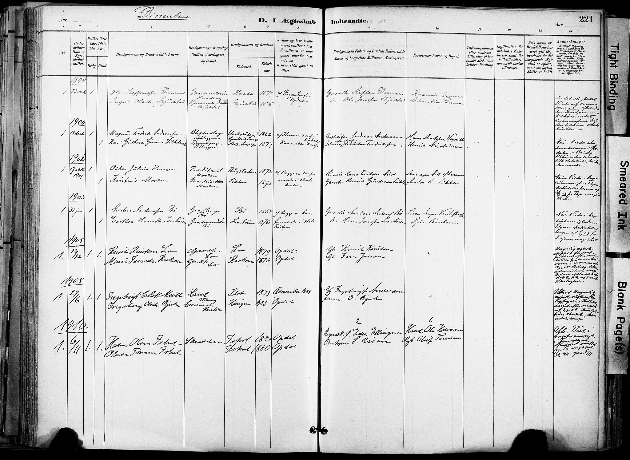 SAT, Ministerialprotokoller, klokkerbøker og fødselsregistre - Sør-Trøndelag, 678/L0902: Ministerialbok nr. 678A11, 1895-1911, s. 221