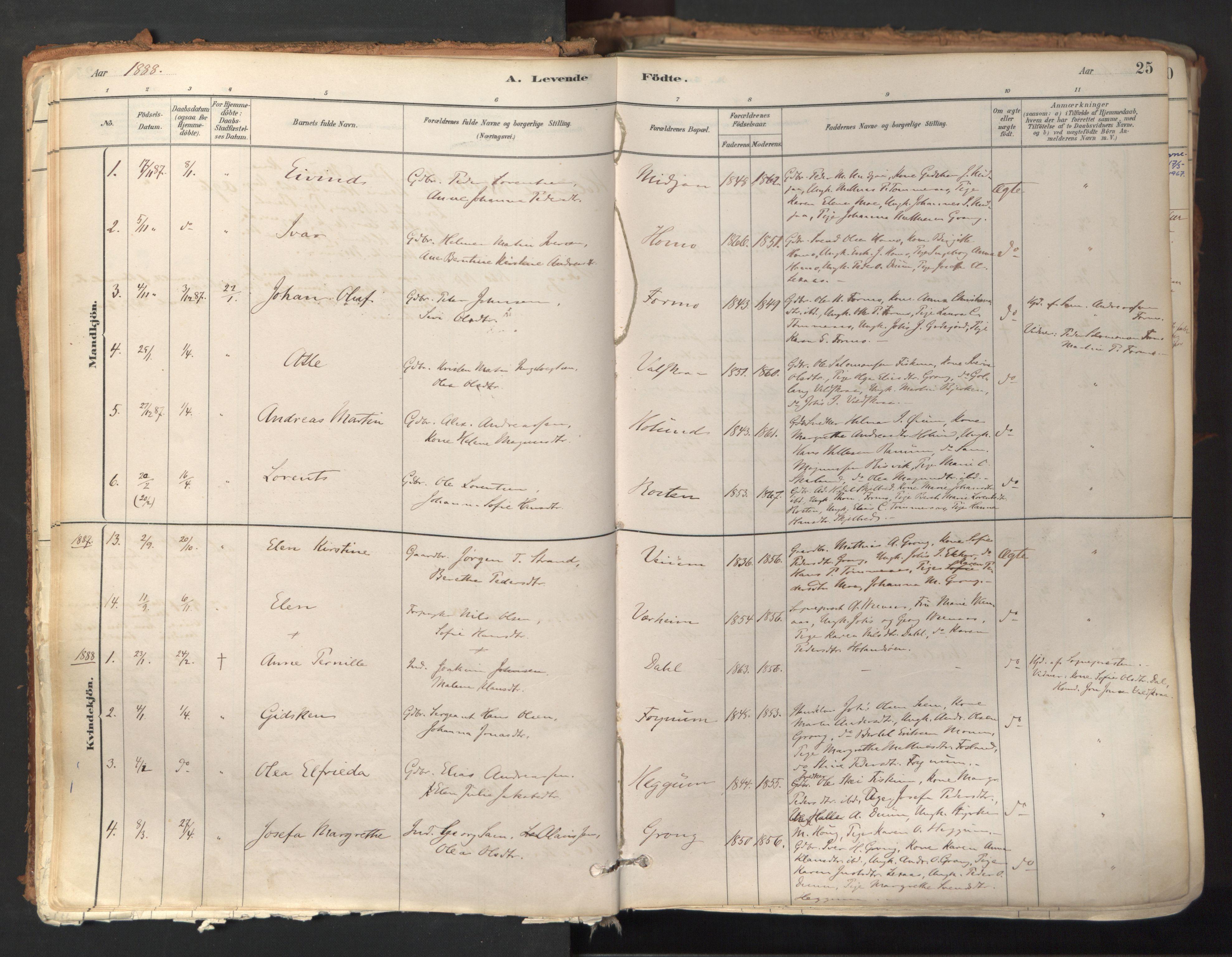 SAT, Ministerialprotokoller, klokkerbøker og fødselsregistre - Nord-Trøndelag, 758/L0519: Ministerialbok nr. 758A04, 1880-1926, s. 25