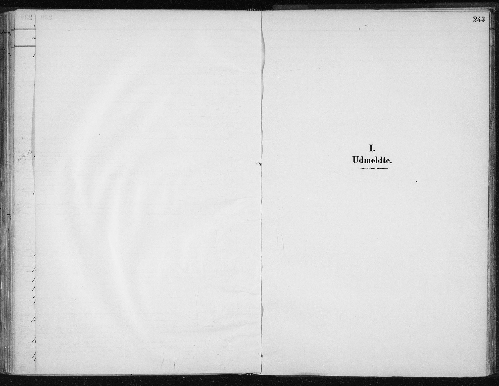 SAT, Ministerialprotokoller, klokkerbøker og fødselsregistre - Nord-Trøndelag, 701/L0010: Ministerialbok nr. 701A10, 1883-1899, s. 243